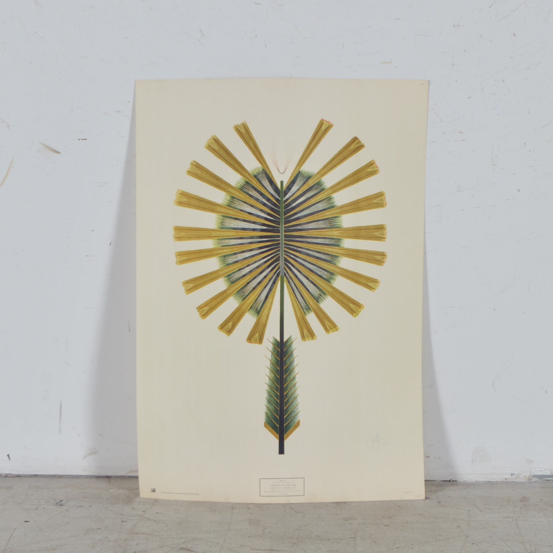 "After Philip Aziz Screenprint ""Apotheosis of a Pine Tree"""