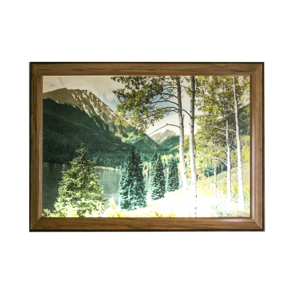 Charmant Vintage Light Up Mountain Scene Wall Art Piece ...