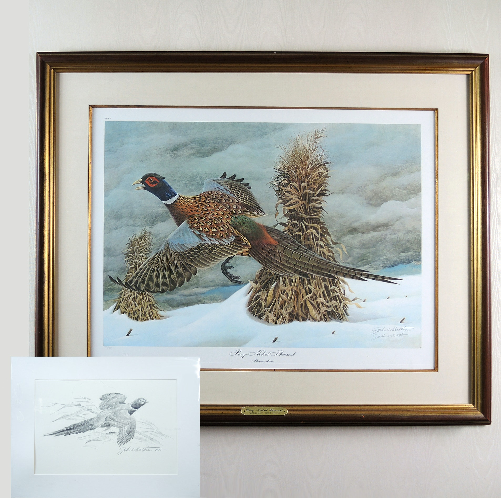 "John A. Ruthven Signed Offset Lithograph ""Ring-Necked Pheasant: Matched Pair"" With Pencil Sketch"