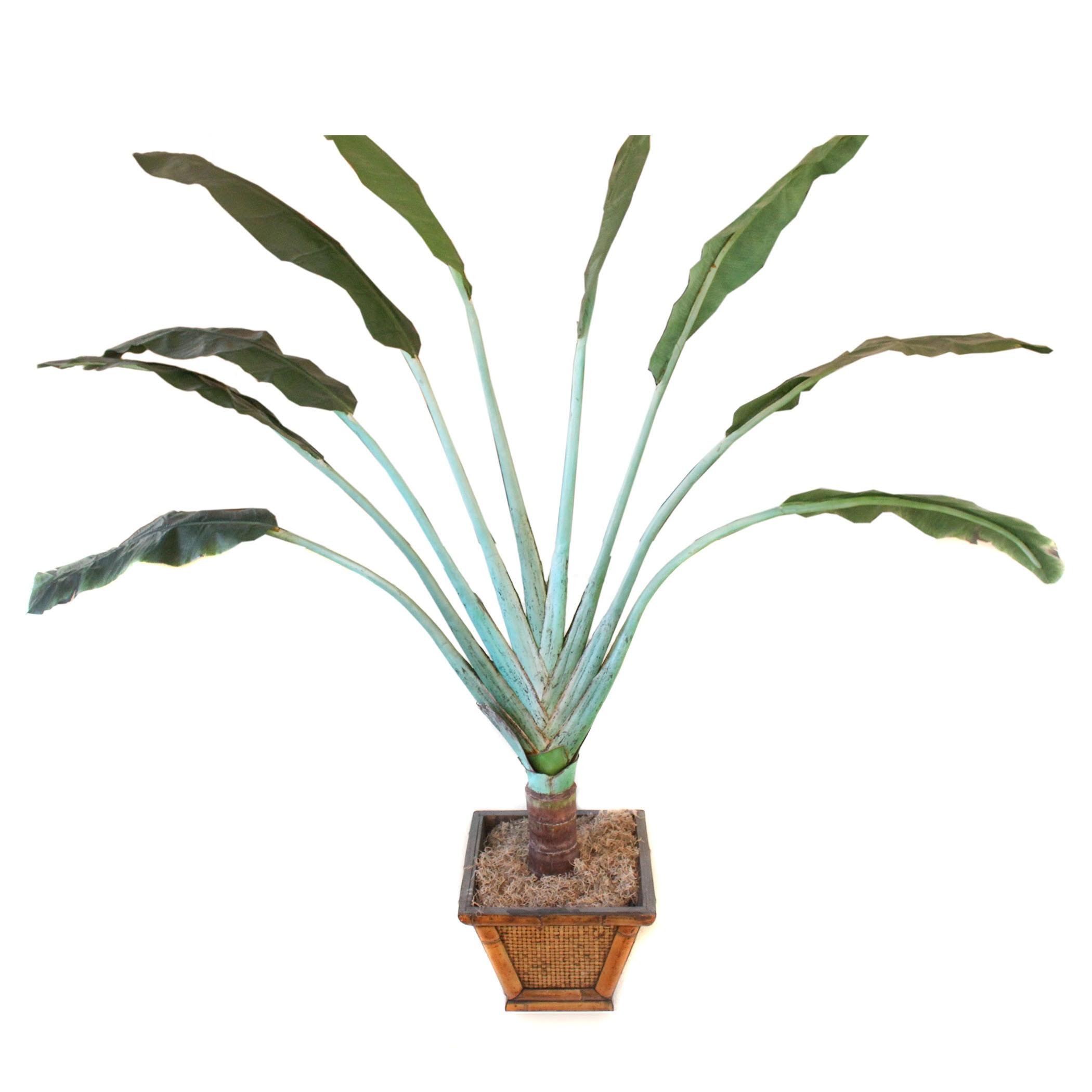 Decorative Silk Travelers Palm