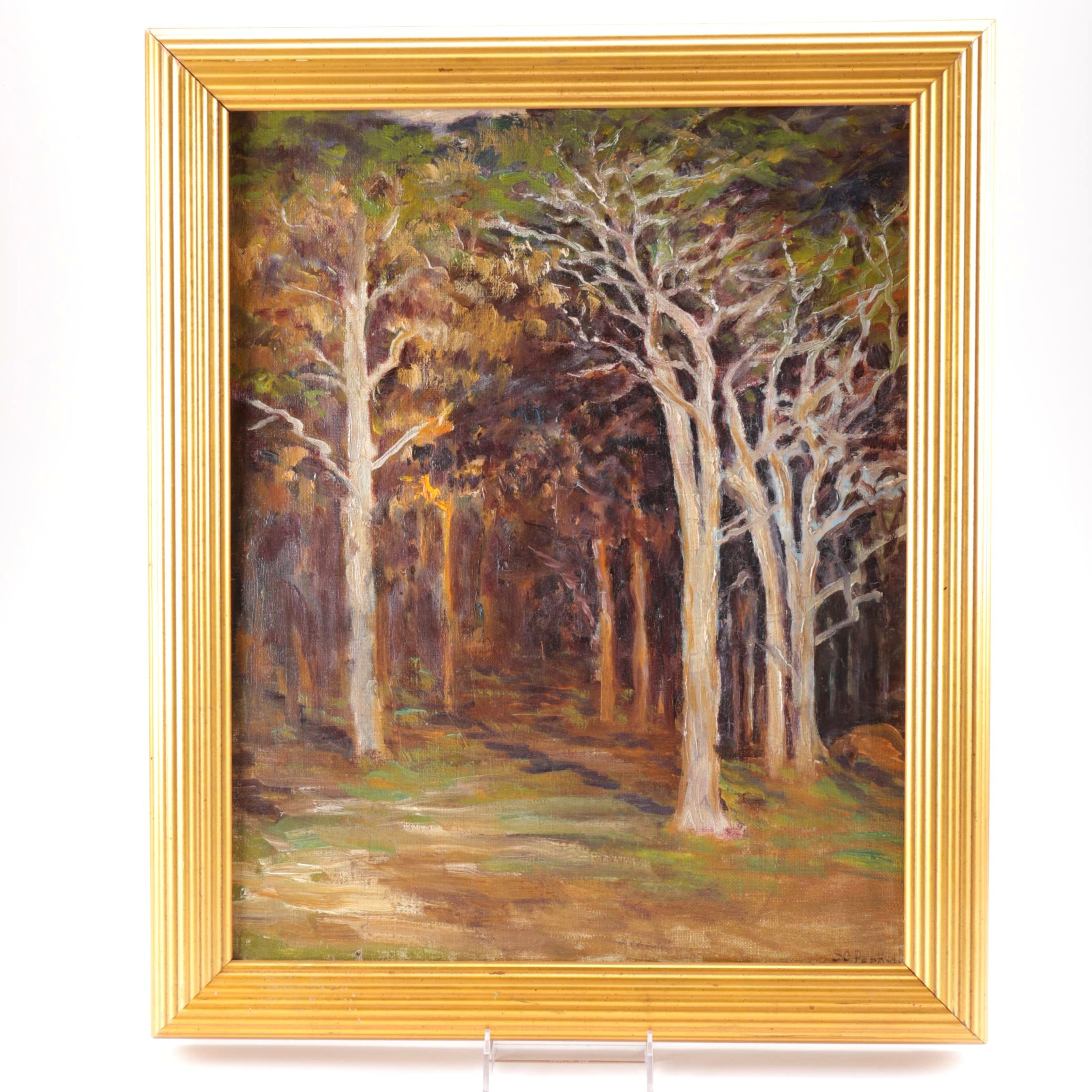 "Sarah C. Parke Oil on Canvas ""Edge Of Woods"""