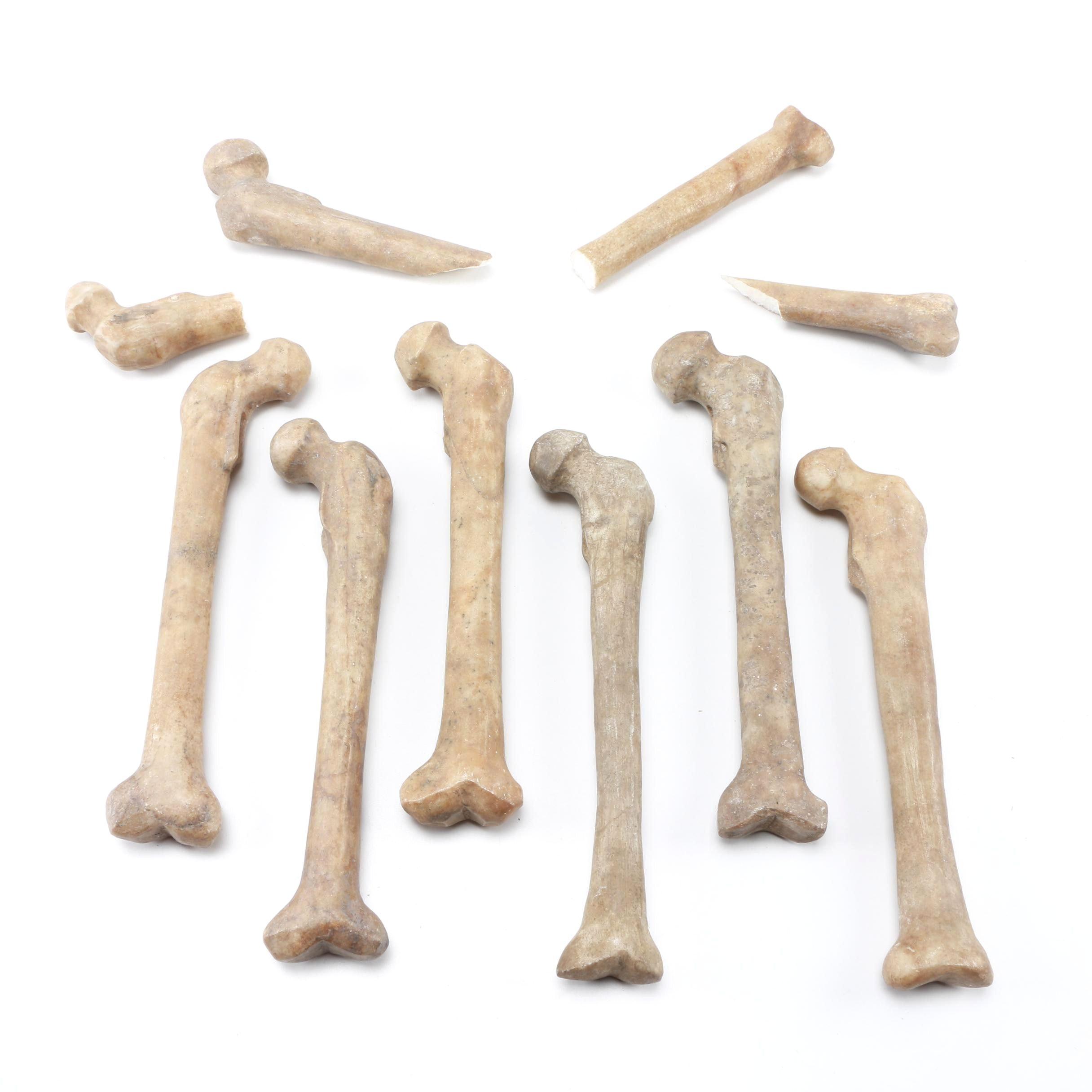 Carved Marble Bones