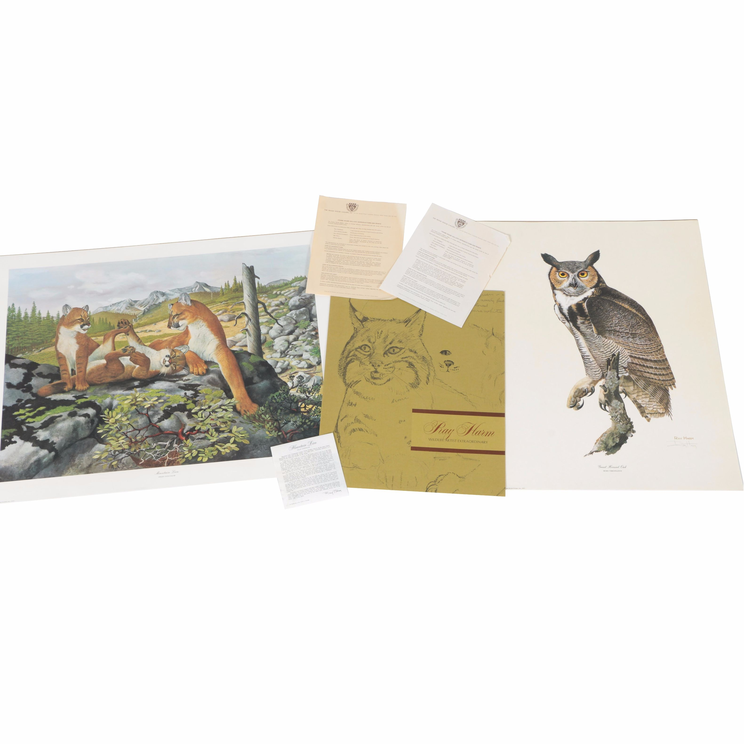 """After Ray Harm Offset Lithographs """"Mountain Lion"""" and """"Great Horned Owl"""""""