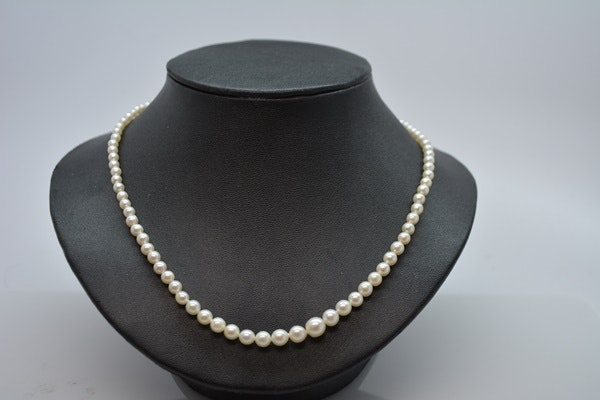 14K Yellow Gold Clasp Graduated Cultured Pearl Necklace