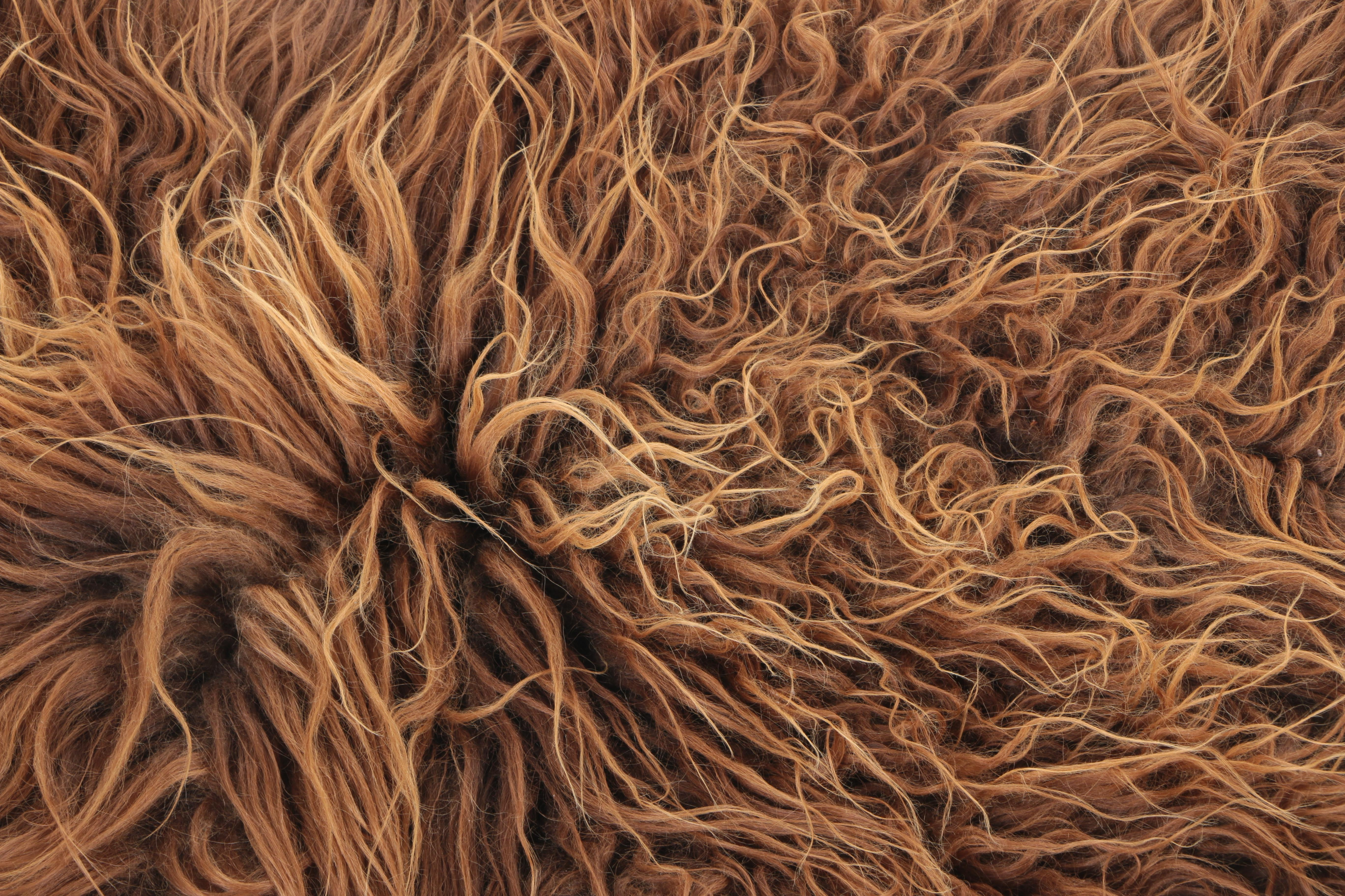 Shaggy Sheep Hide Accent Rug In Brown Ebth