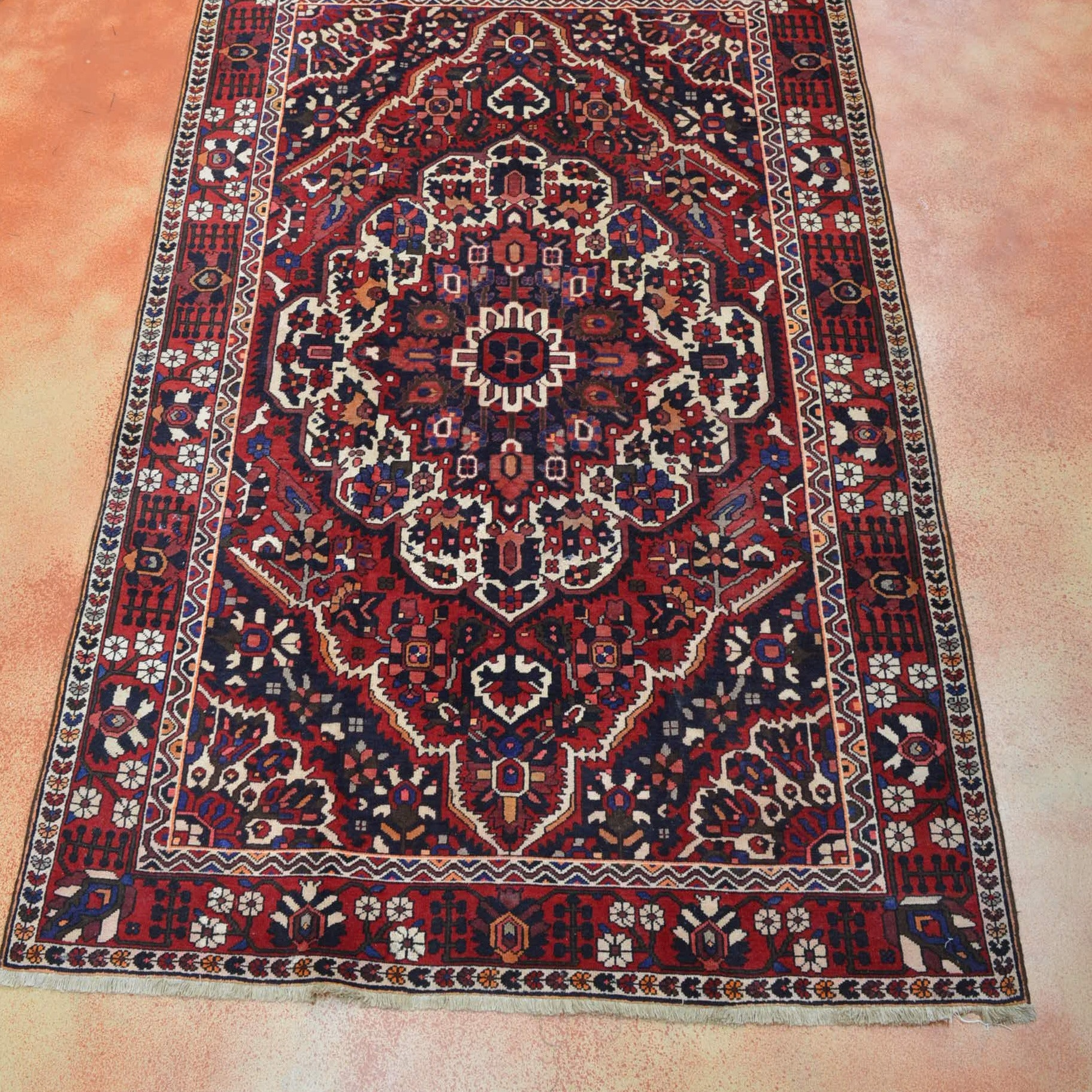 Hand Knotted Bakhtari Area Rug