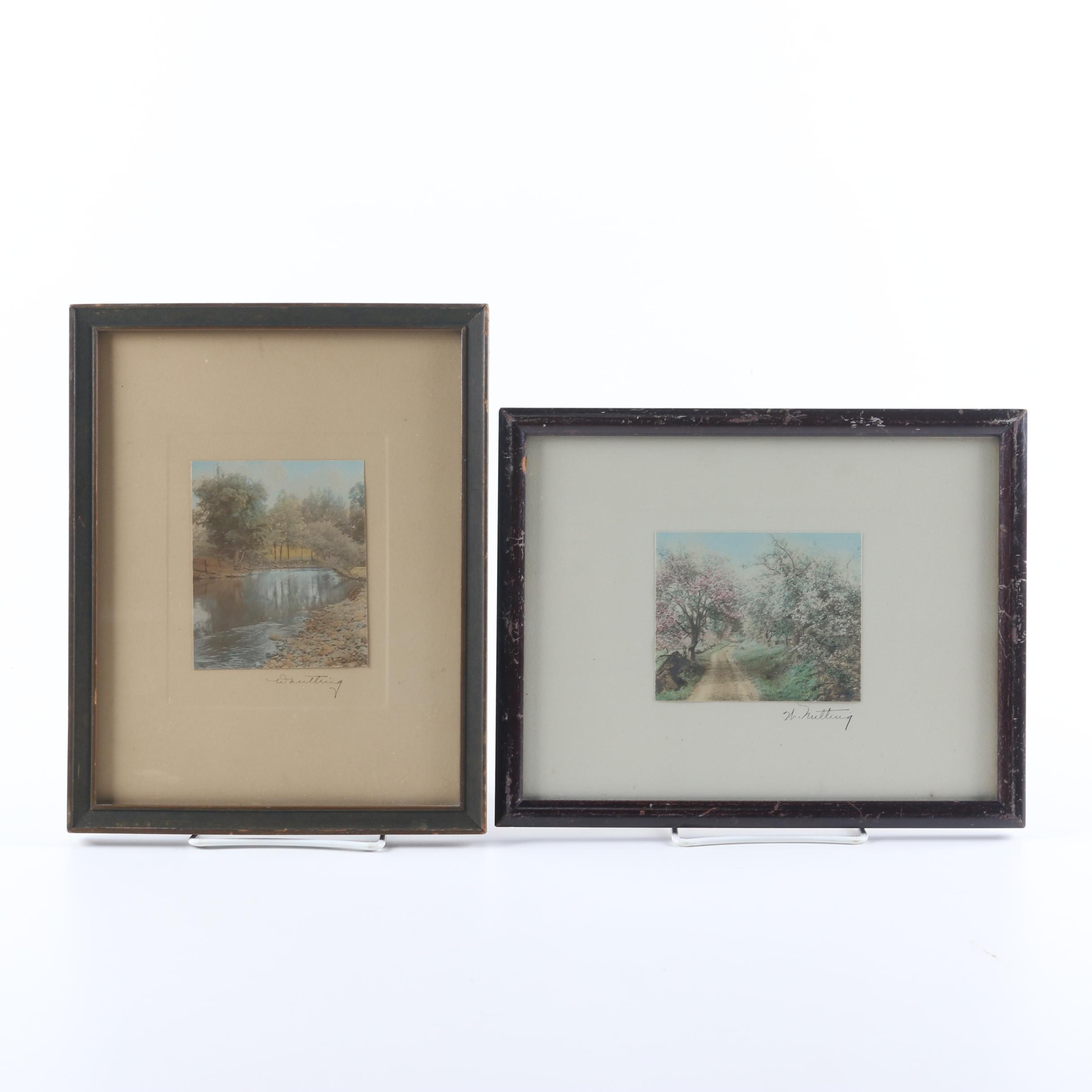 Wallace Nutting Hand Colored Landscape Photographs