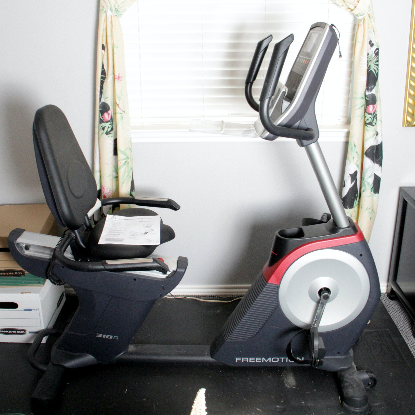 Freemotion 310R Exercise Bike with Floor Pad