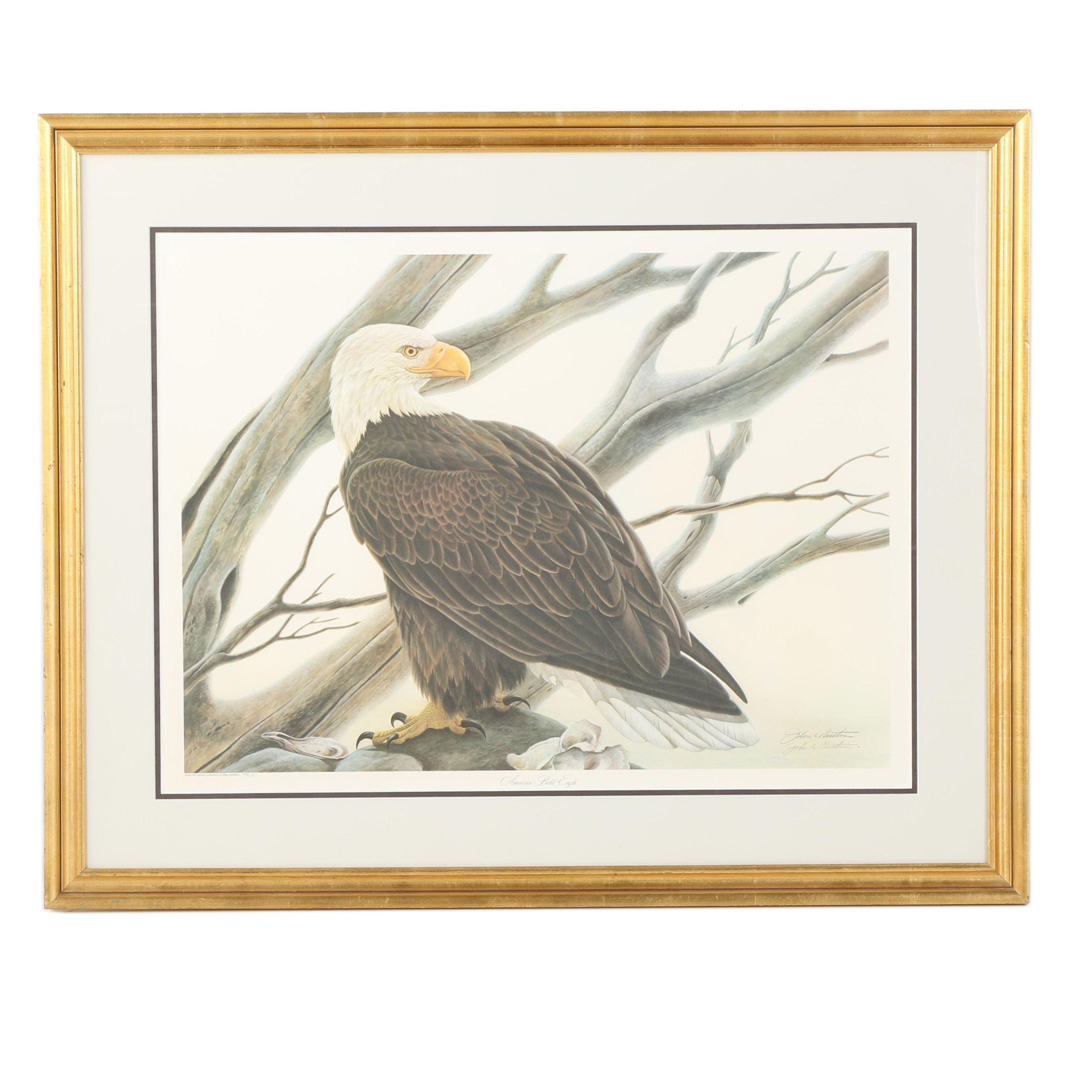 "Limited Edition Offset Lithograph by John Ruthven ""American Bald Eagle"""