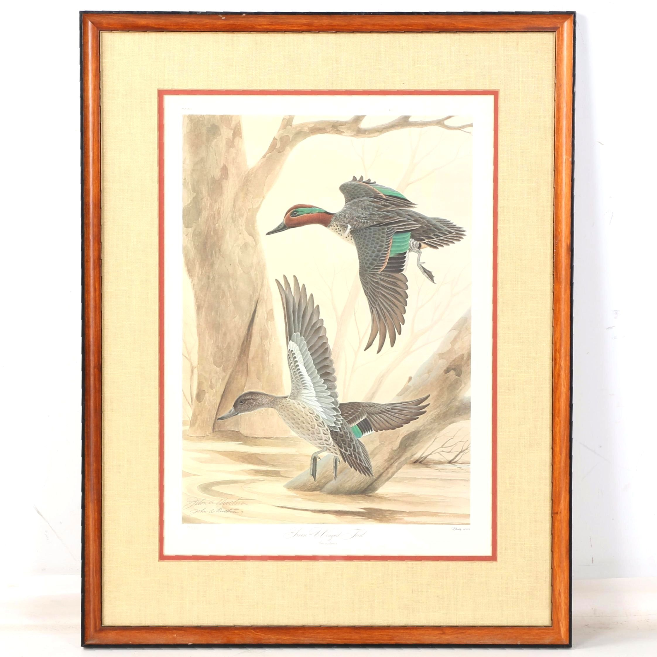 """John A. Ruthven Limited Edition Offset Lithograph """"Green-Winged Teal"""""""