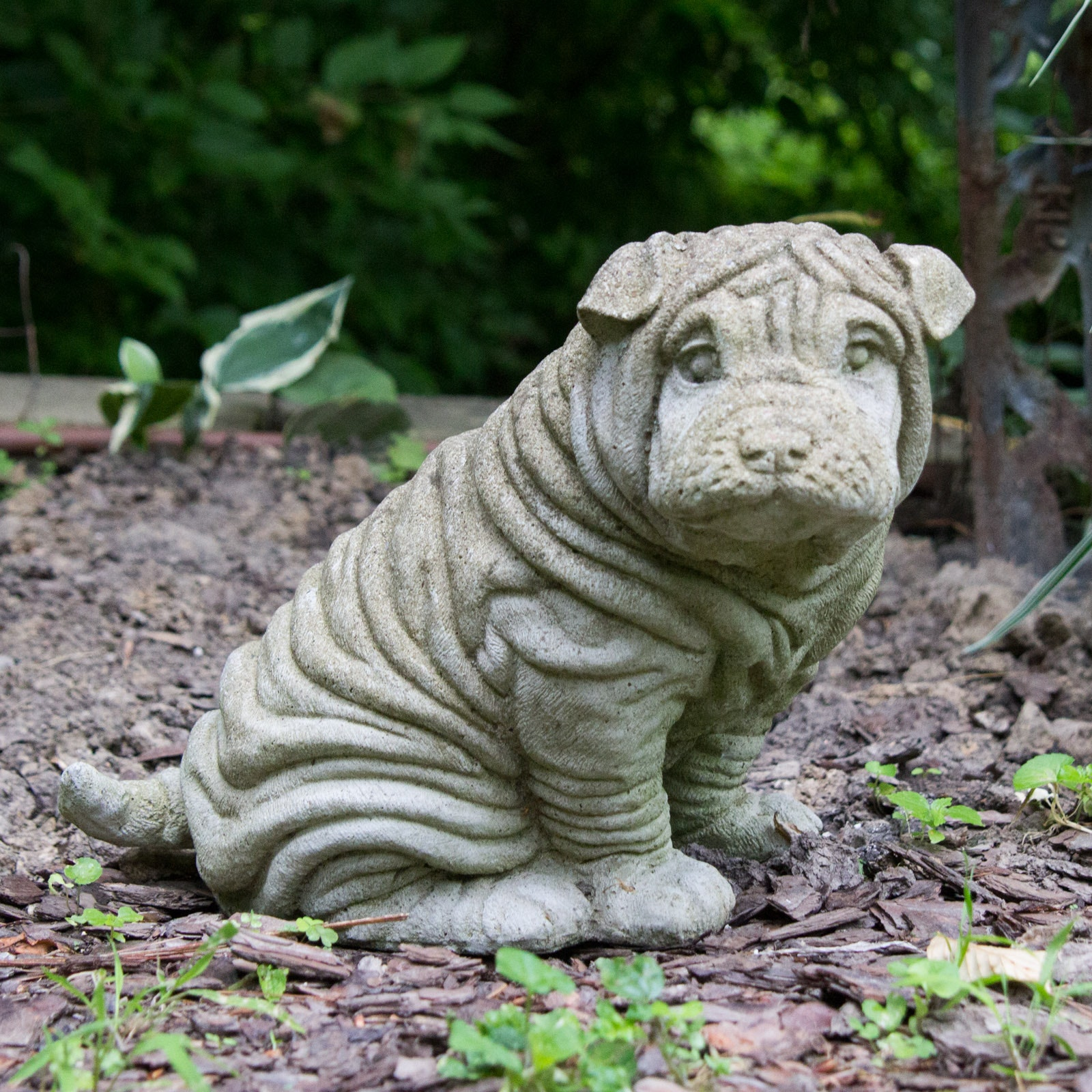 Concrete Sharpei Dog Yard Decoration