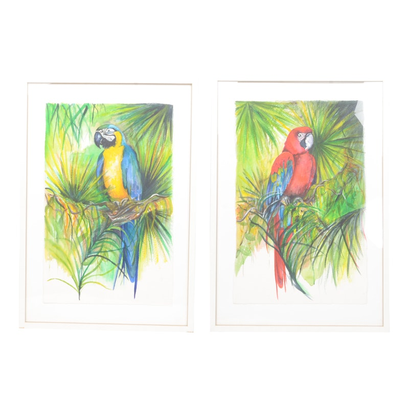 Mary-Clare Cornwallis Watercolor Paintings on Paper of Parrots