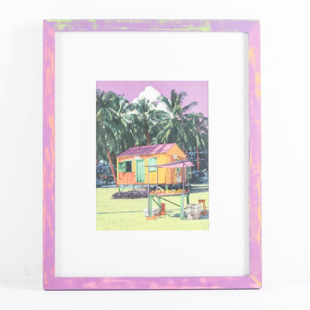 "Robin Renee Hix Hand-Painted Photograph ""Fruit Mon"""