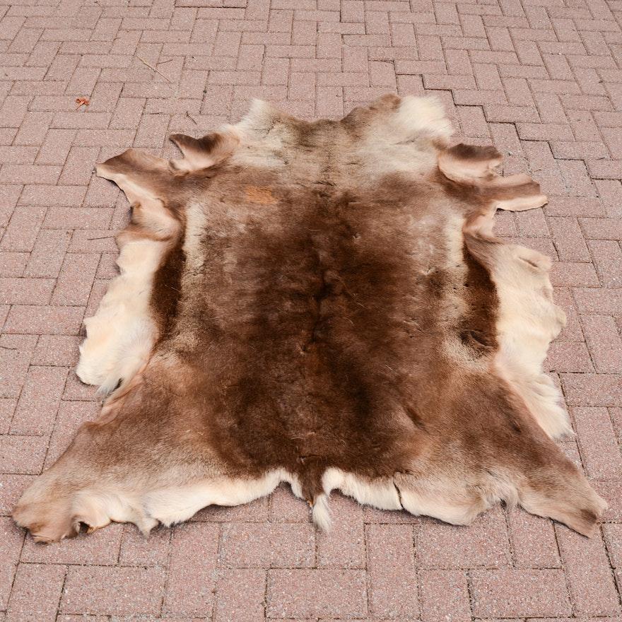 Alaskan Elk Hide Rug Ebth