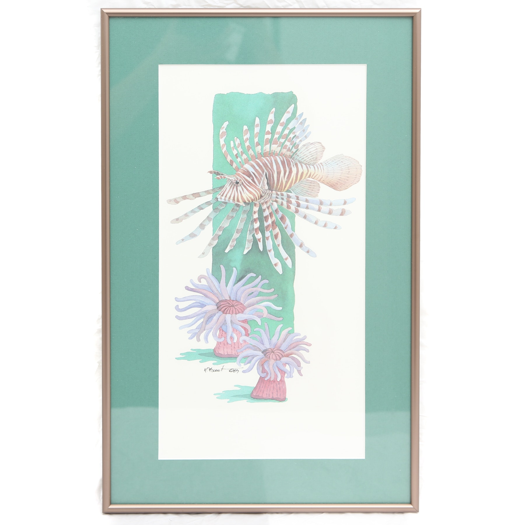 Signed Framed Offset Lithograph of Marine Life