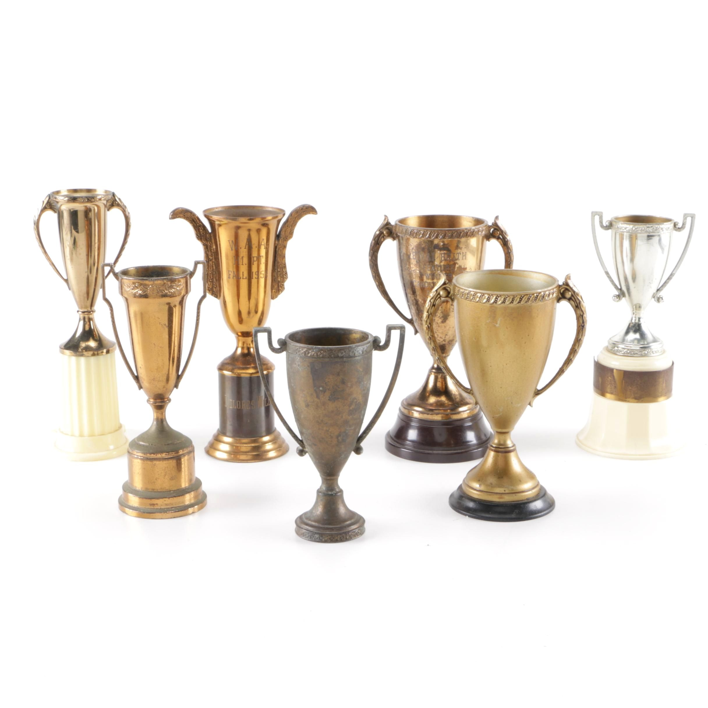 Assorted Metal Trophies