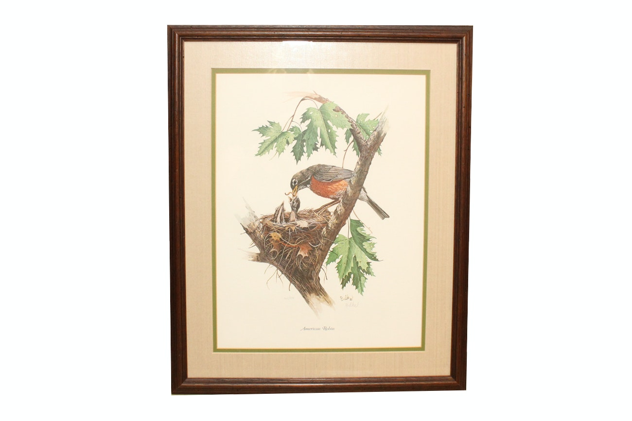 """Don Balke Limited Edition Offset Lithograph """"American Robin"""""""