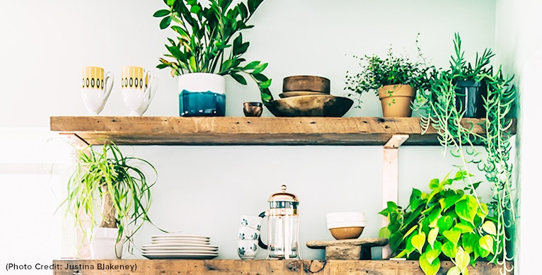 Tips Of The Trade : Bringing Outdoors In With Bohemian Justina Blakeney Of The Jungalow