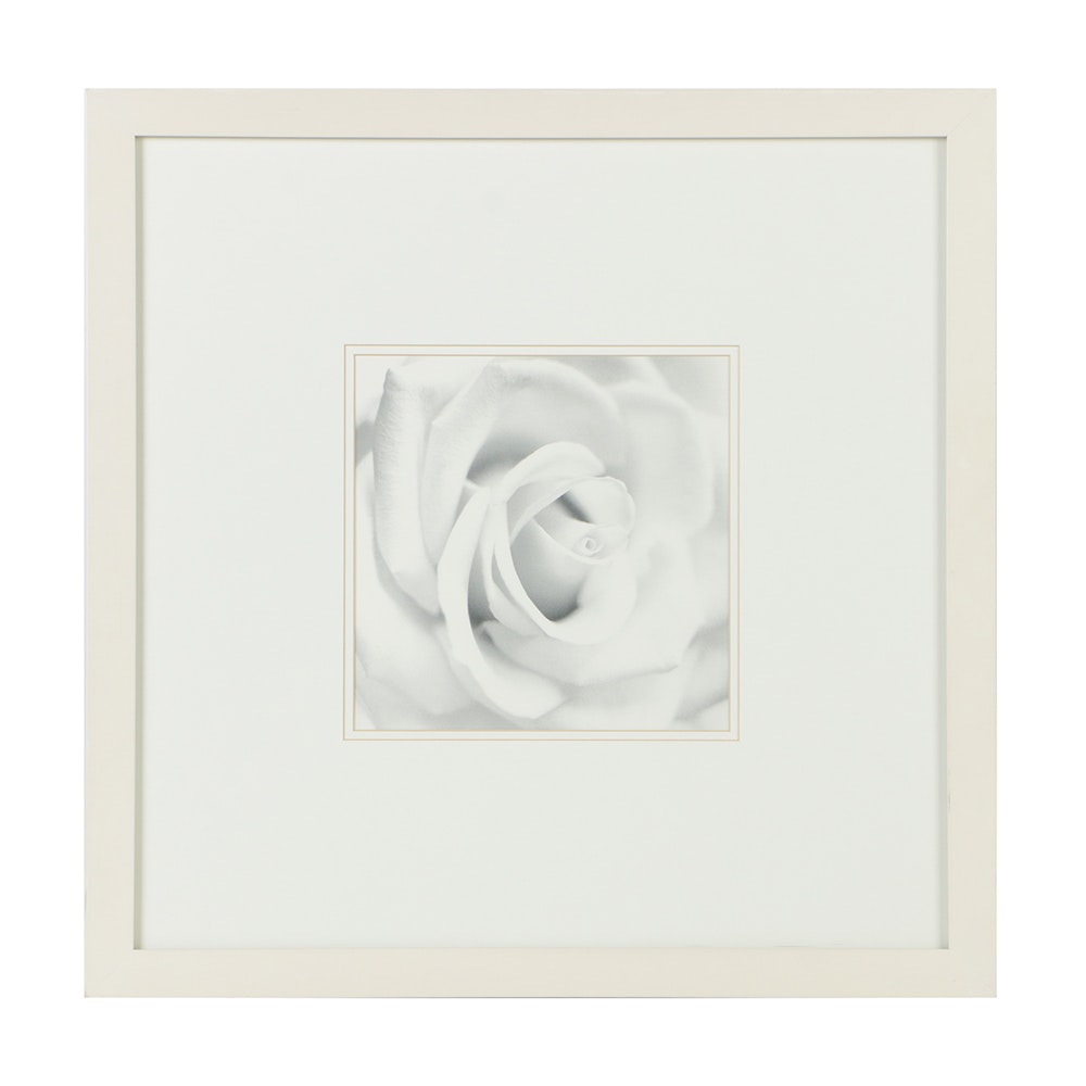 Decorative Offset Lithograph on Paper Black and White Flowers