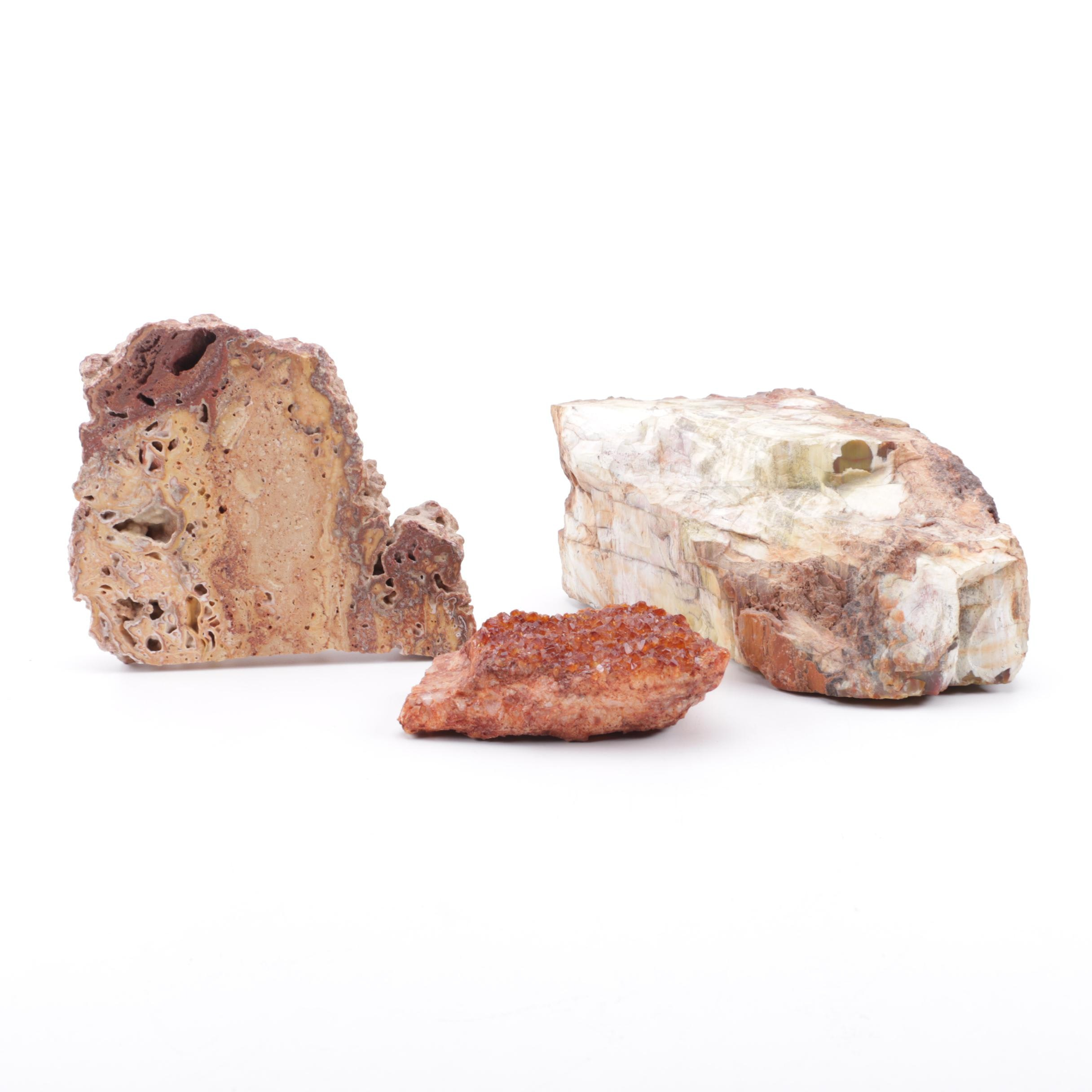 Fossil and Mineral Specimens