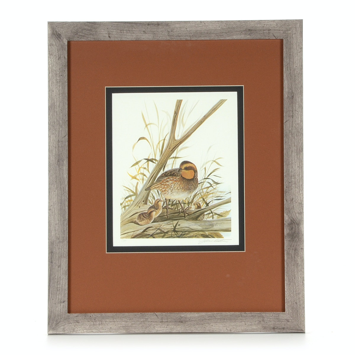 """John Ruthven Signed Limited Edition Offset Lithograph """"Bobwhite Quail with Young"""""""