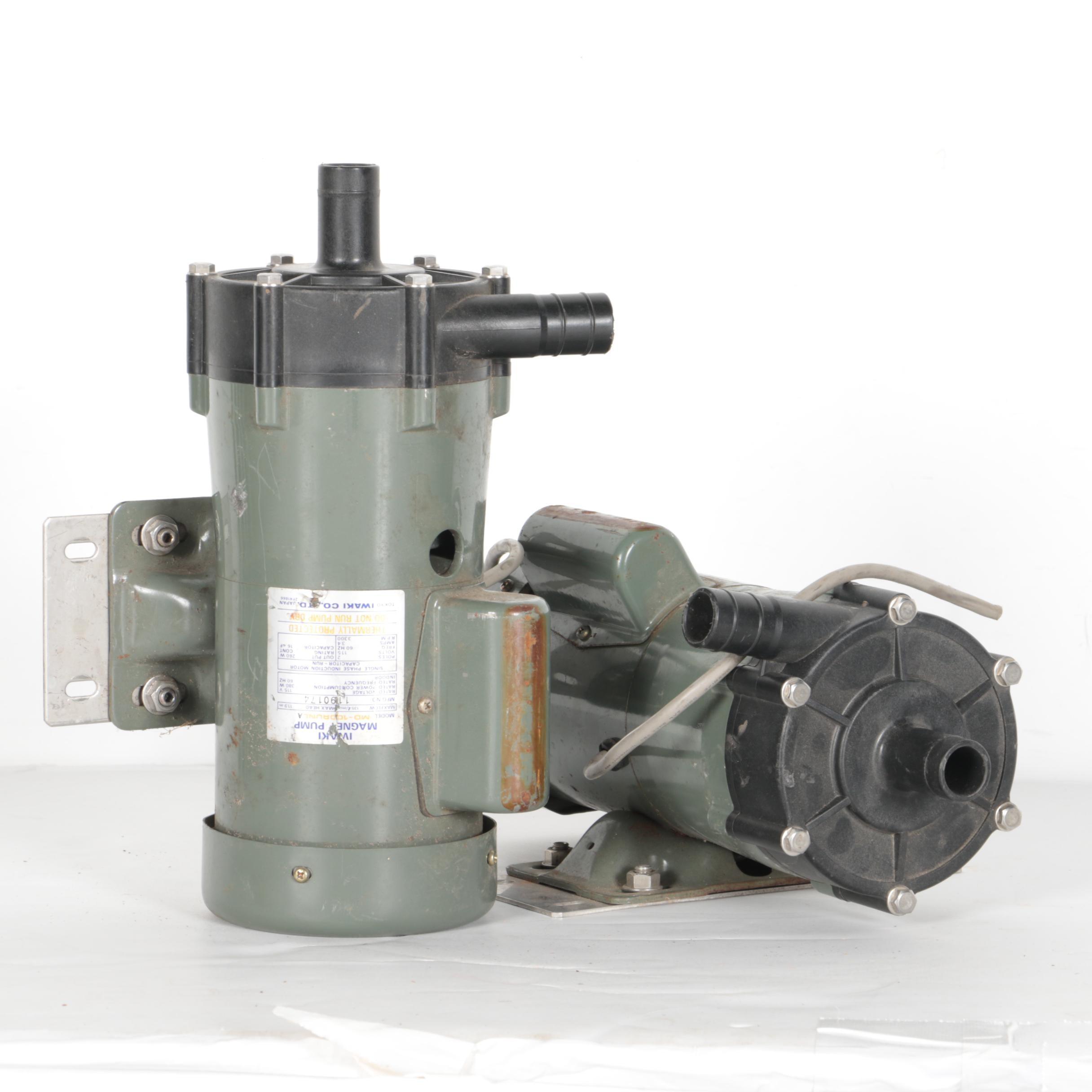 Pair of Iwaki Magnet Pumps