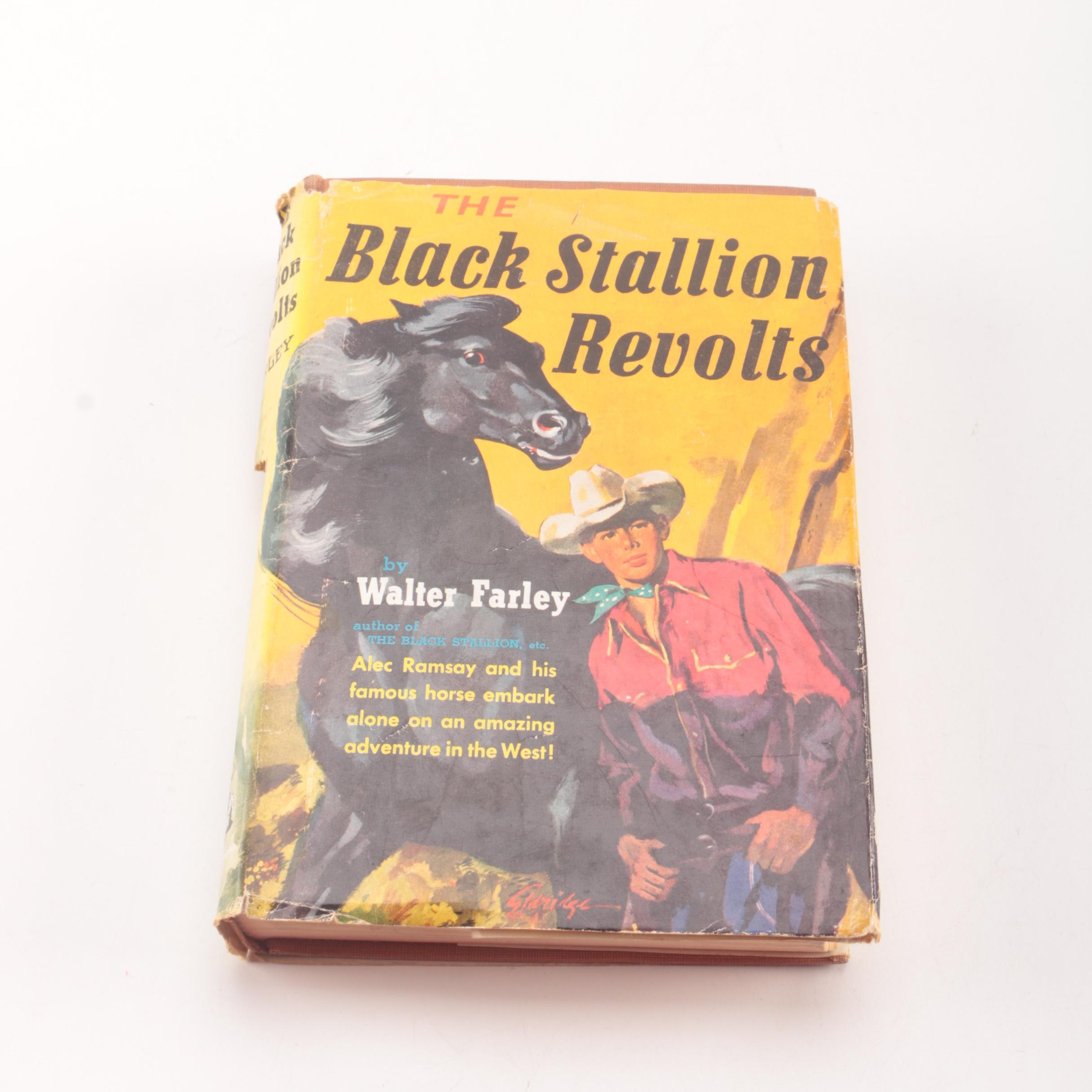 """1953 First Printing """"The Black Stallion Revolts"""" by Walter Farley"""