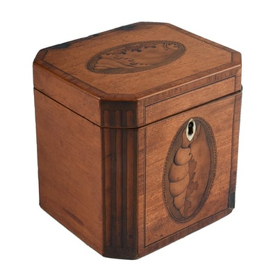19th-Century English Tea Caddy with Shell Form Marquetry Inlay
