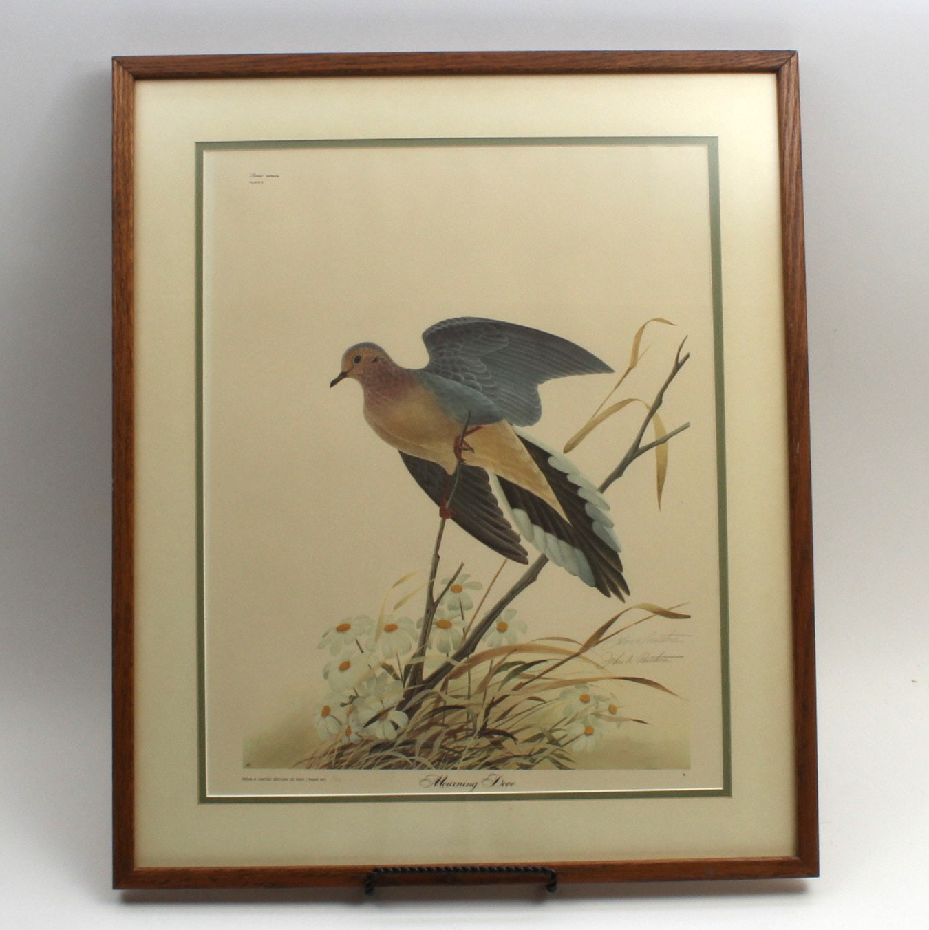 "John Ruthven Limited Edition Offset Lithograph ""Mourning Dove"""