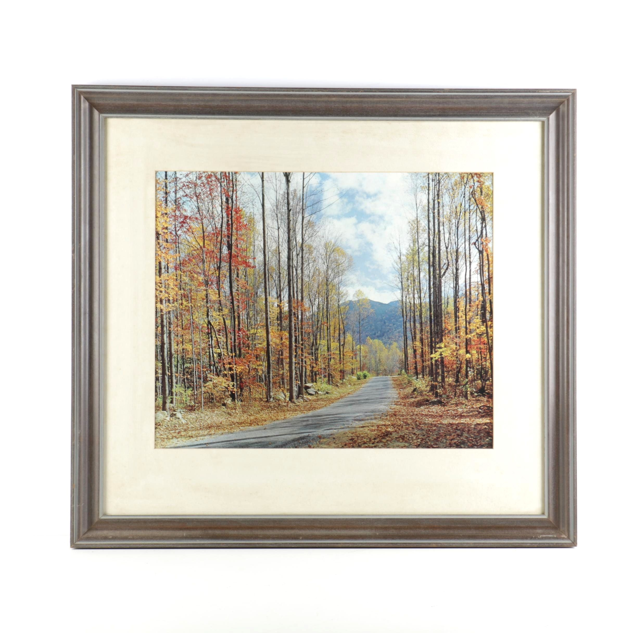 Framed Offset Lithograph on Paper of a Mountain Path