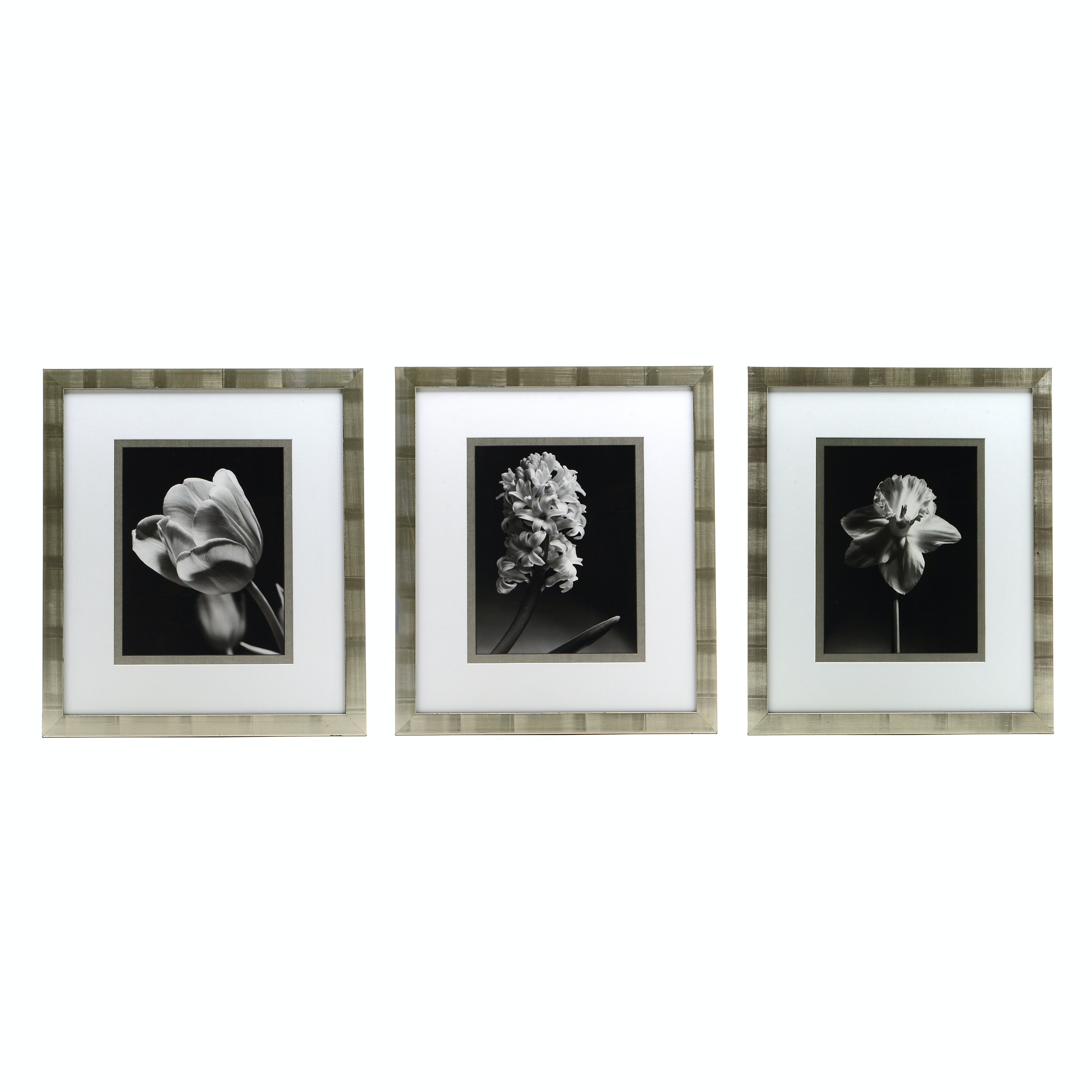 Three Photo Offset Lithographs in the Style of Robert Mapplethorp