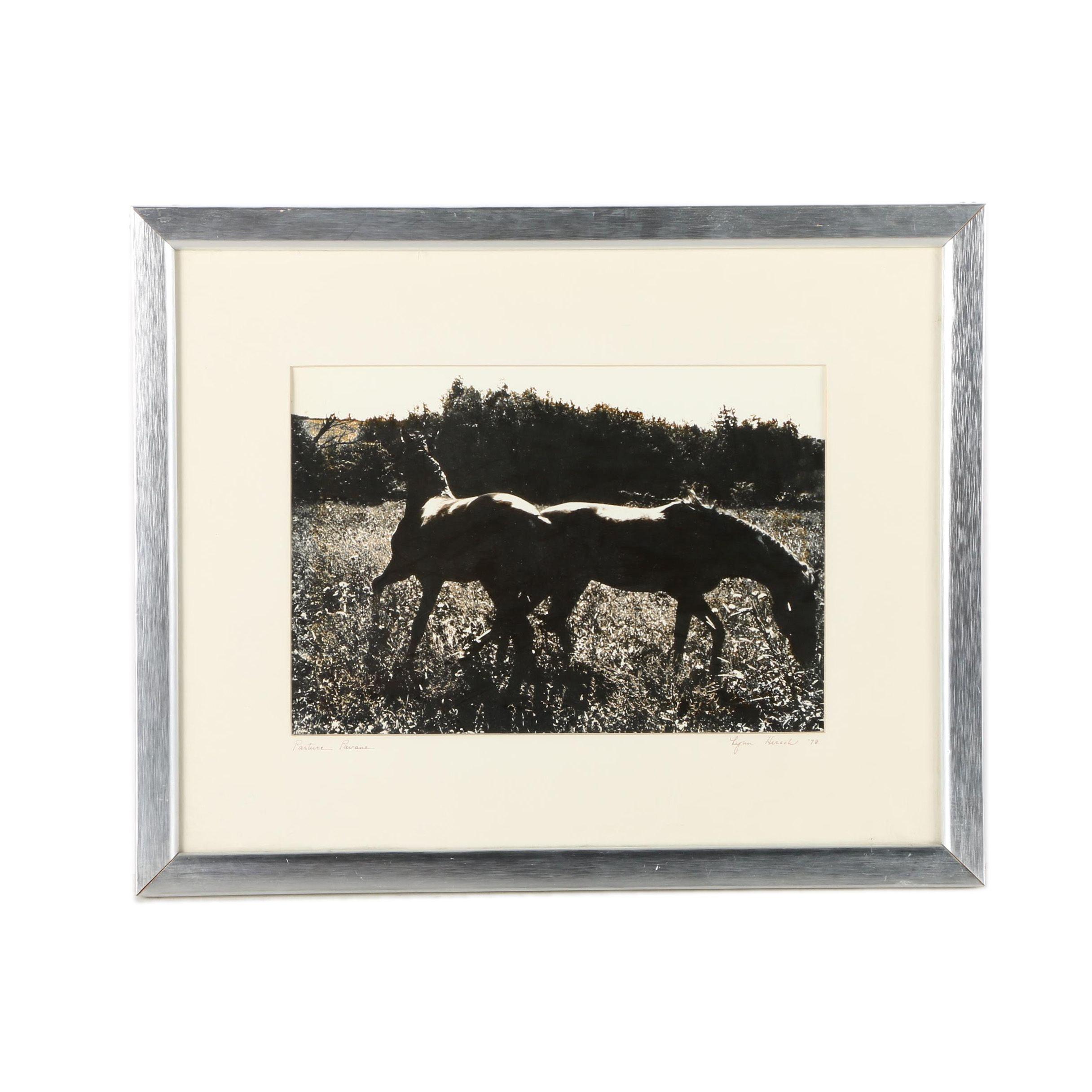 "Lynn Hirsch 1978 Sepia Photograph ""Pasture Pavane"""