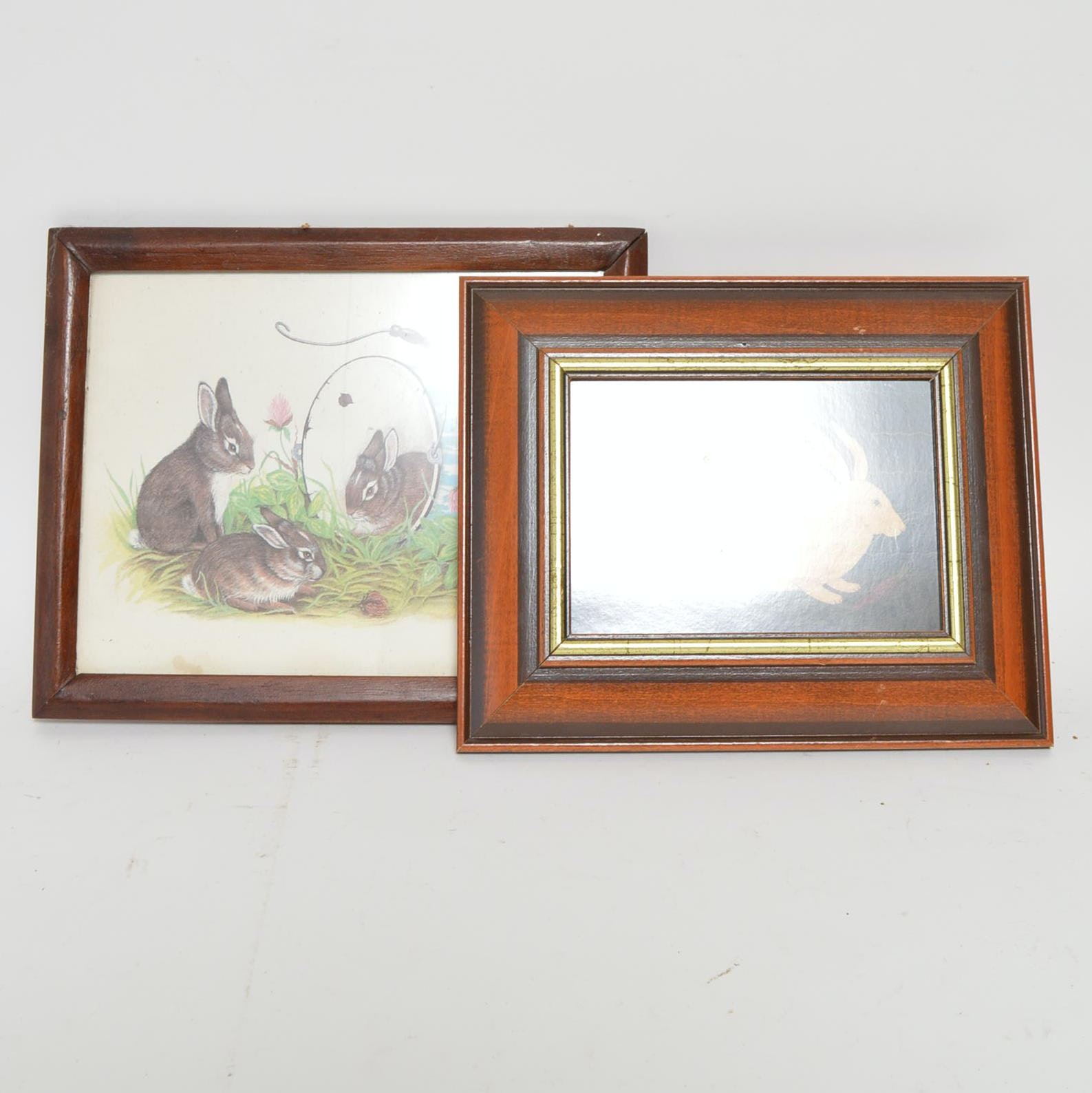Offset Lithographs of Rabbits by Wilma B. Vincent and W. Kimbele