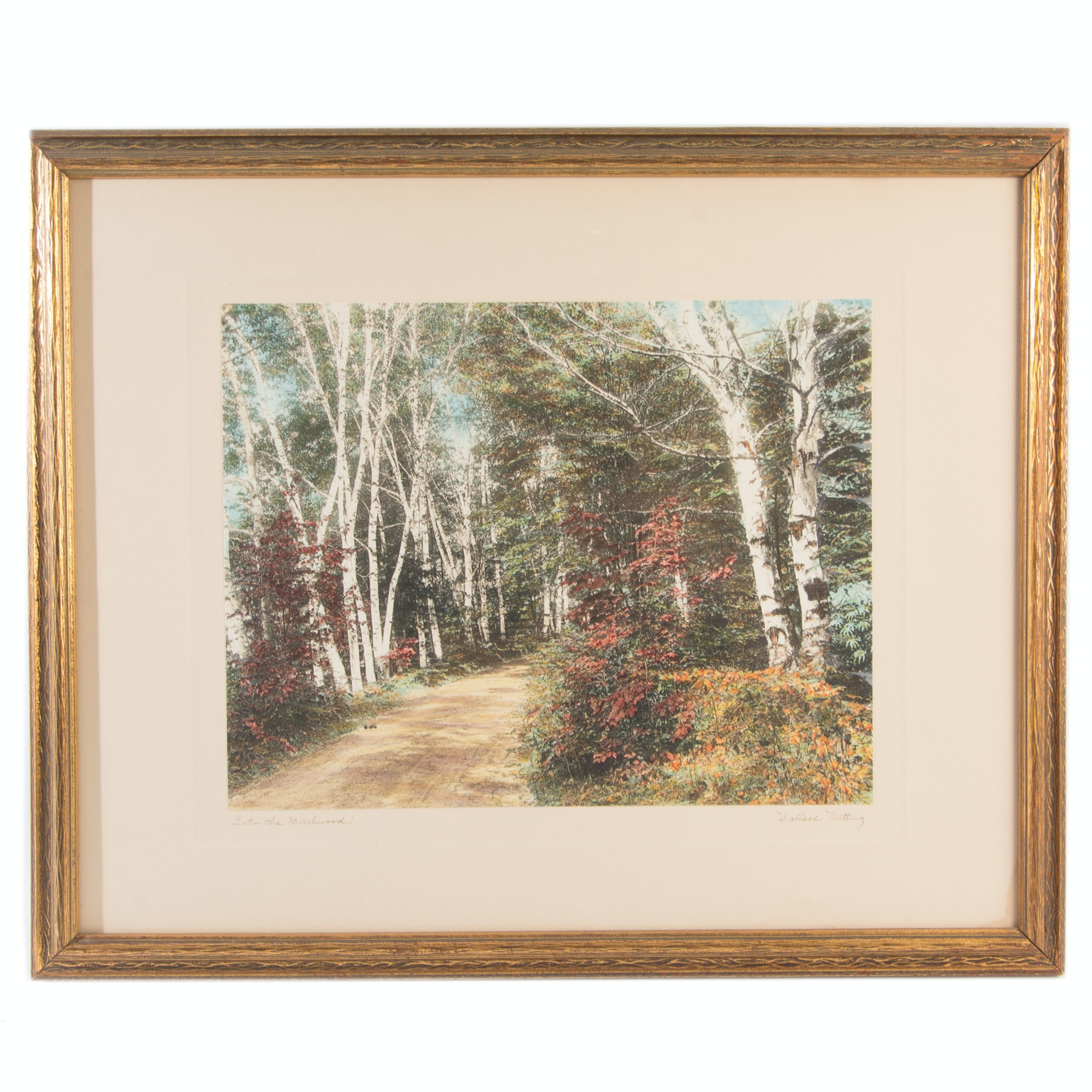"Wallace Nutting Hand Tinted Photogravure ""Into the Birchwood!"""