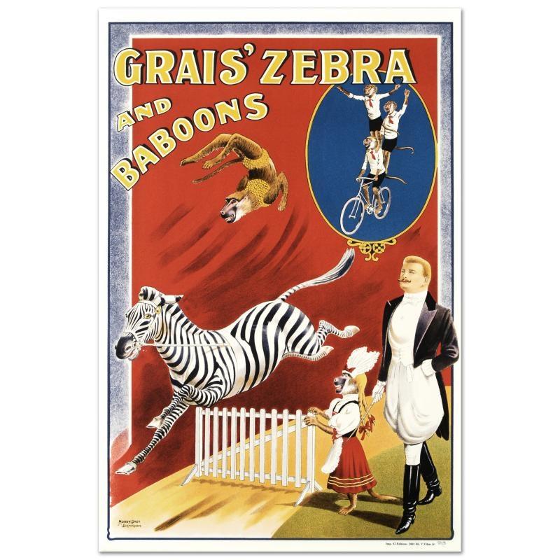 """Grais Zebras and Baboons"" After Albert Whitfield Lithograph"