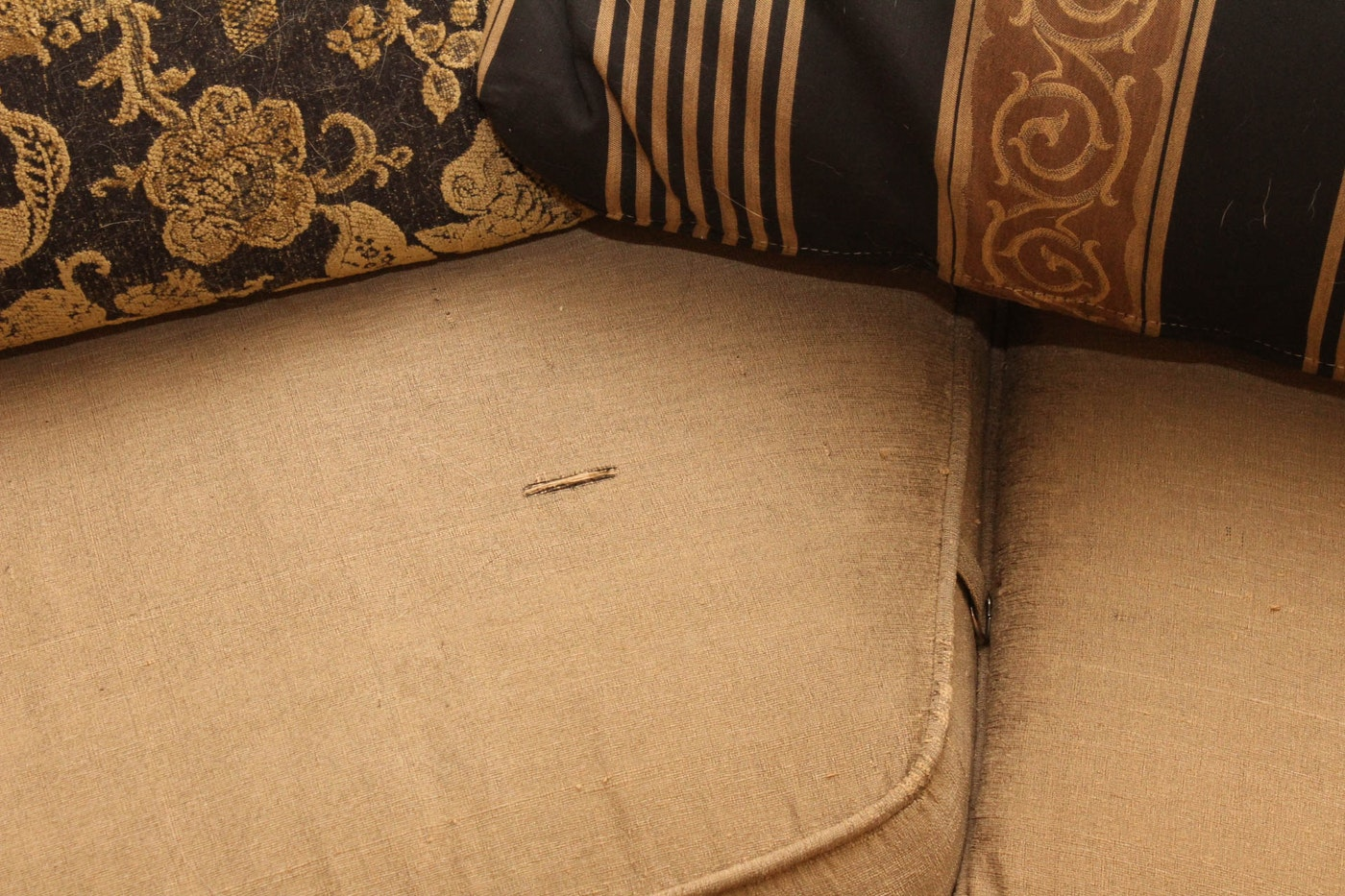 Throw Pillows With Matching Rug : Curved Sofa with Coordinating Throw Pillows and Accent Rug : EBTH