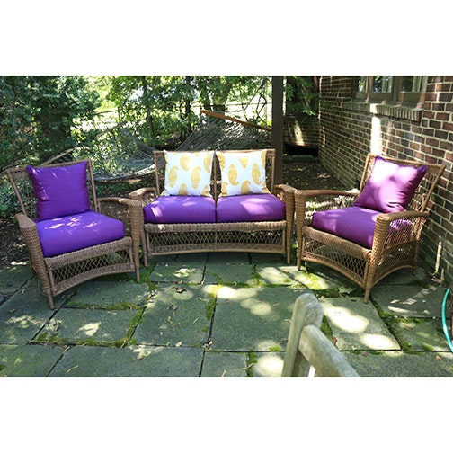 Outdoor Lounge Furniture with Crate and Barrel Cushions