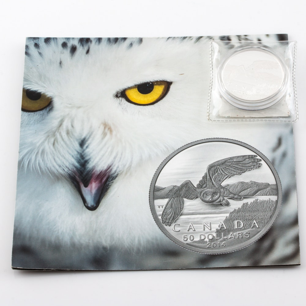 2014 Silver $50 Snowy Owl Proof Coin