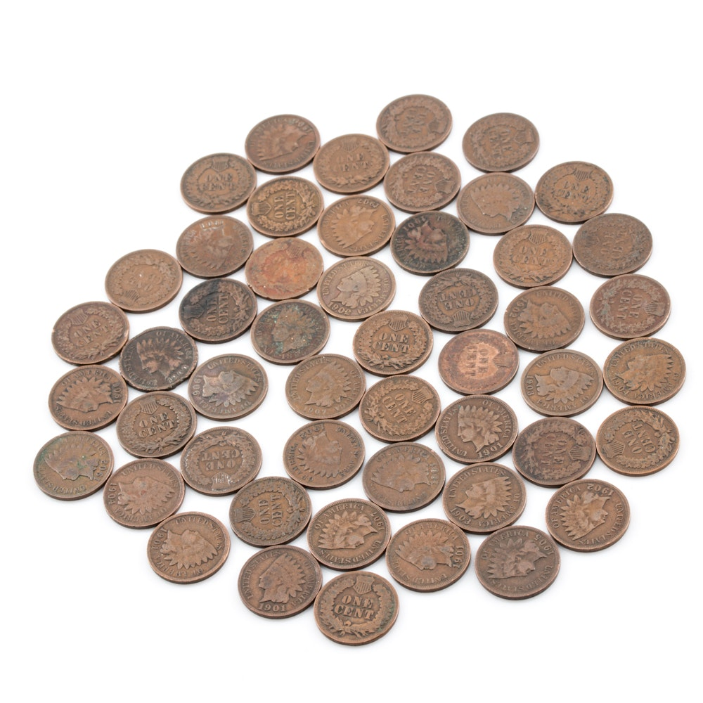 Group of 50 Indian Head Pennies