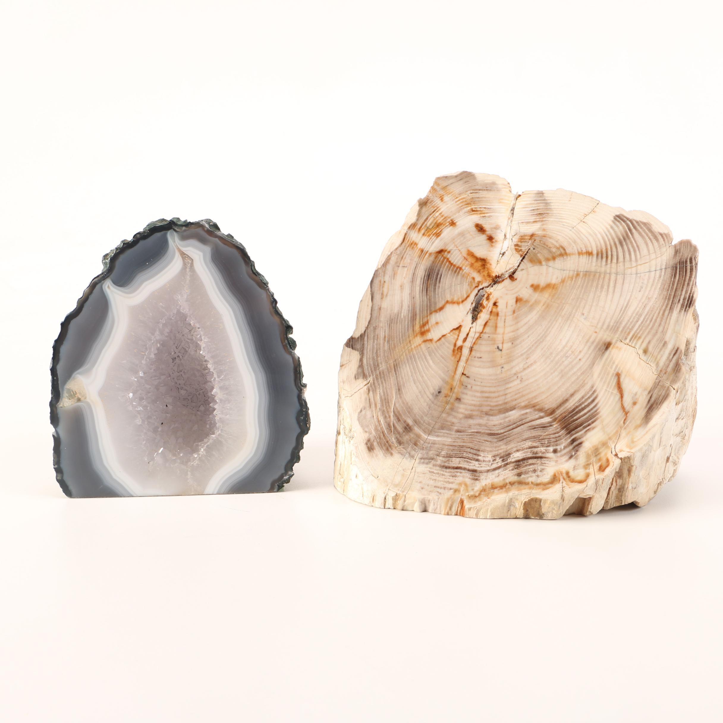 Petrified Wood and Geode