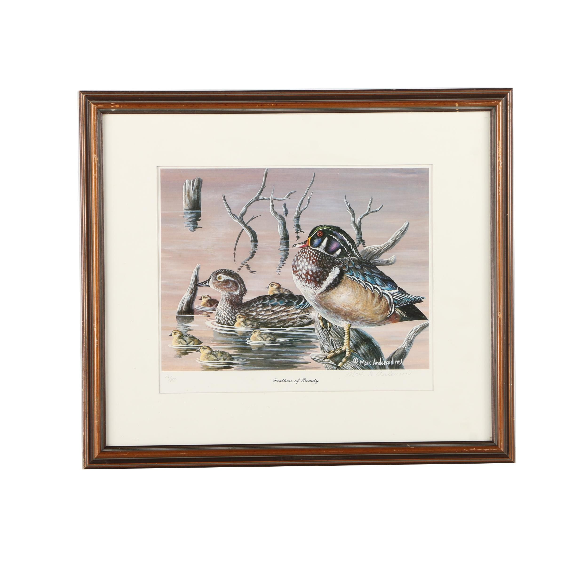 "Mark S. Anderson Limited Edition Offset Lithograph ""Feathers of Beauty"""