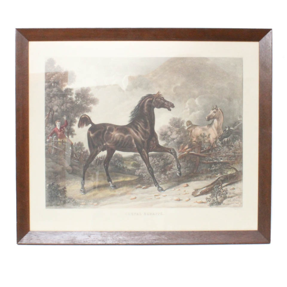 "Antique Etching by Carle Vernet ""Cheval Eschappe"""