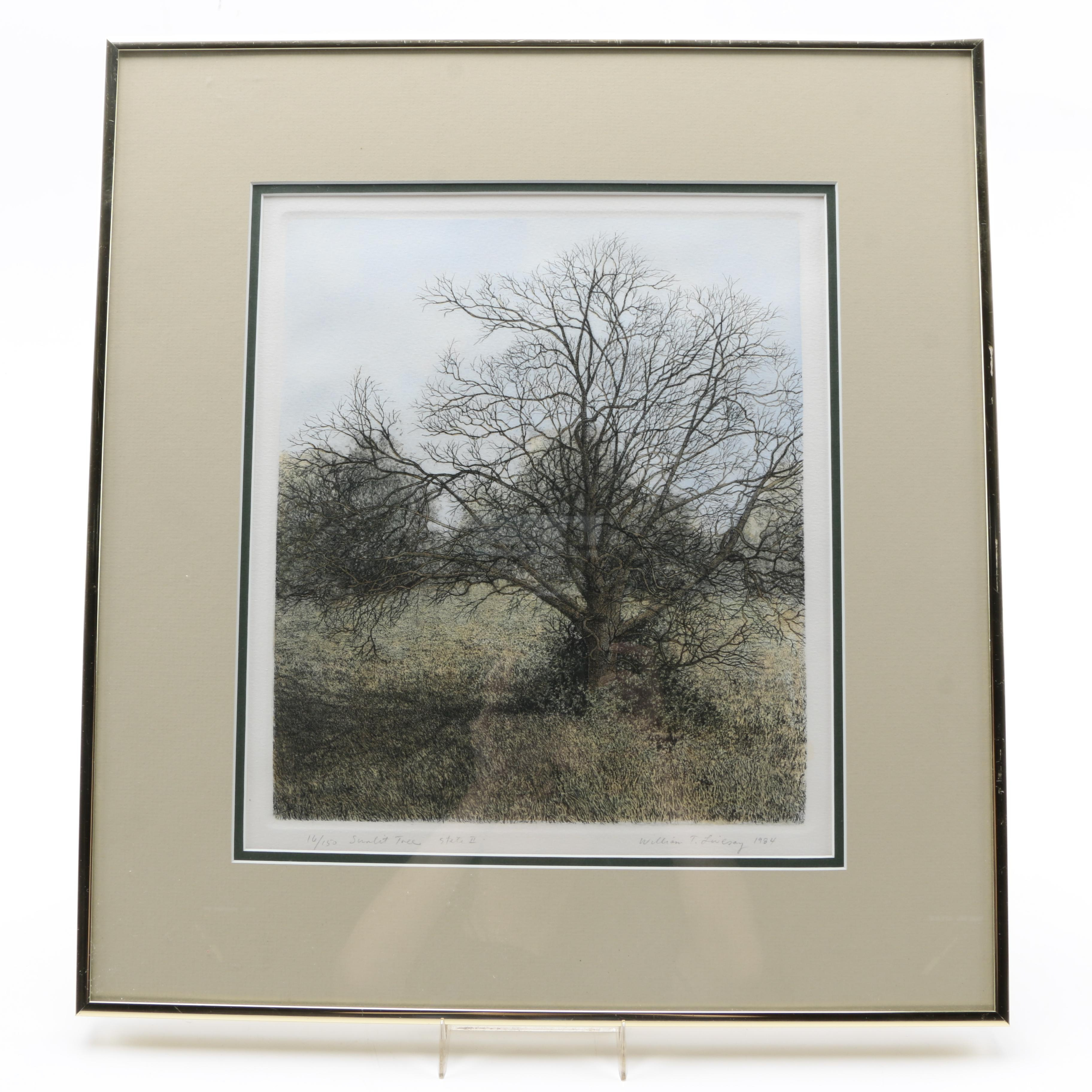 "William T. Livesay Limited Edition Aquatint Etching ""Sunlit Tree"""