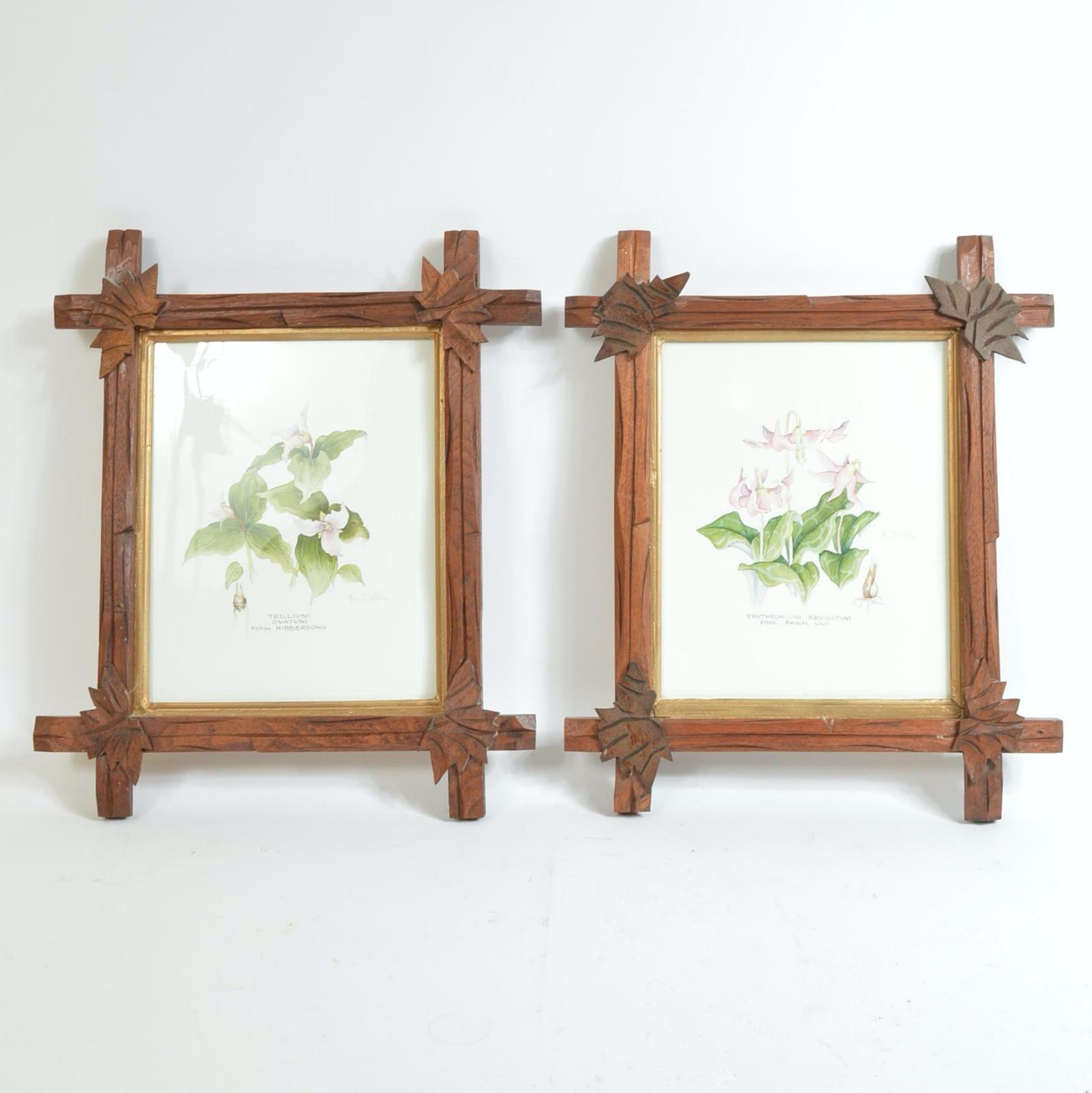 Framed Floral Offset Lithographs After Lyn Noble