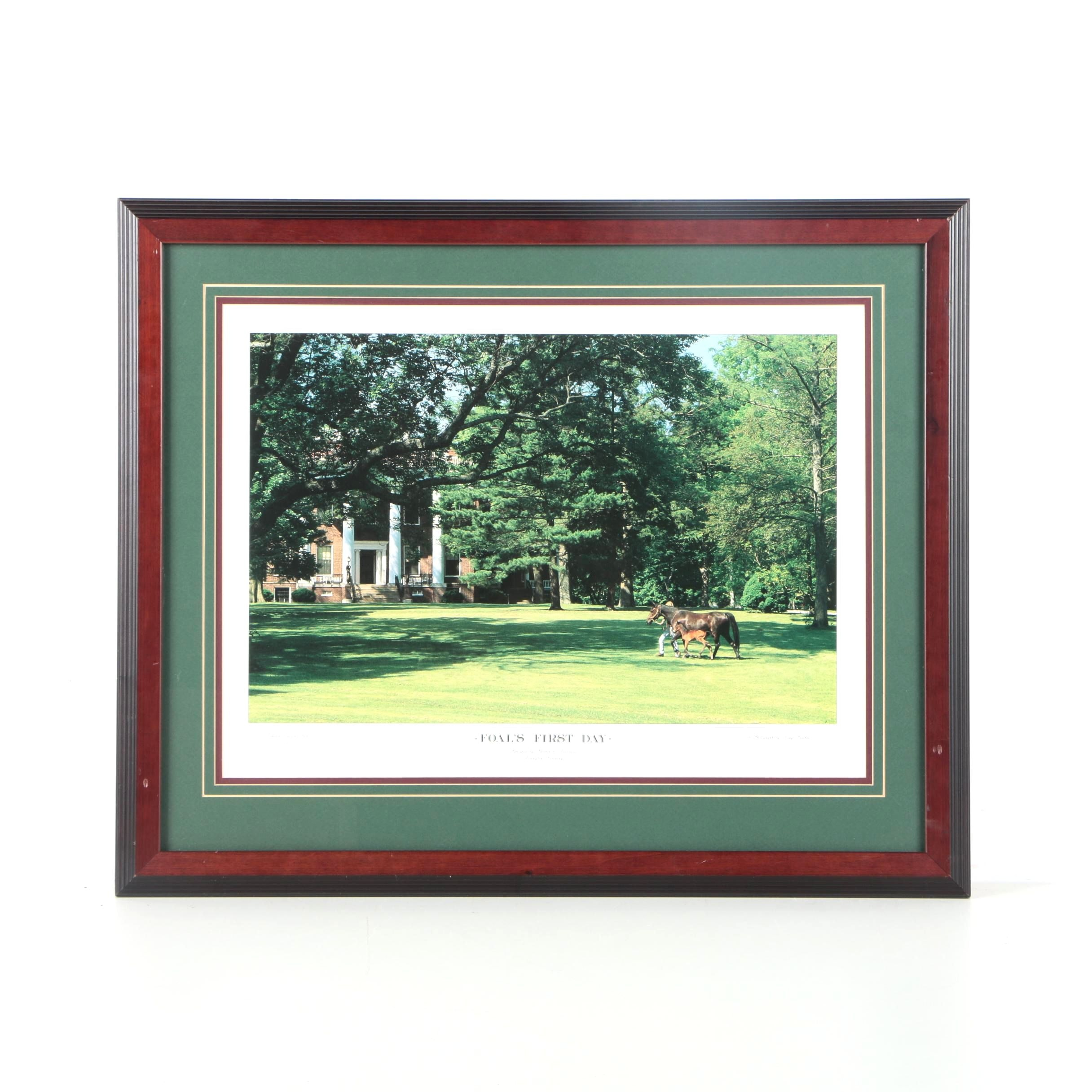 """Doug Prather Limited Edition Offset Lithograph """"Foal's First Day"""""""