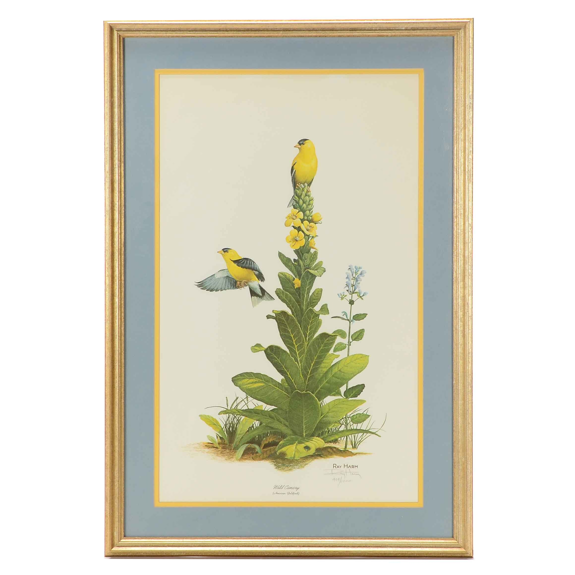 Ray Harm, Signed Lithograph, Wild Canary