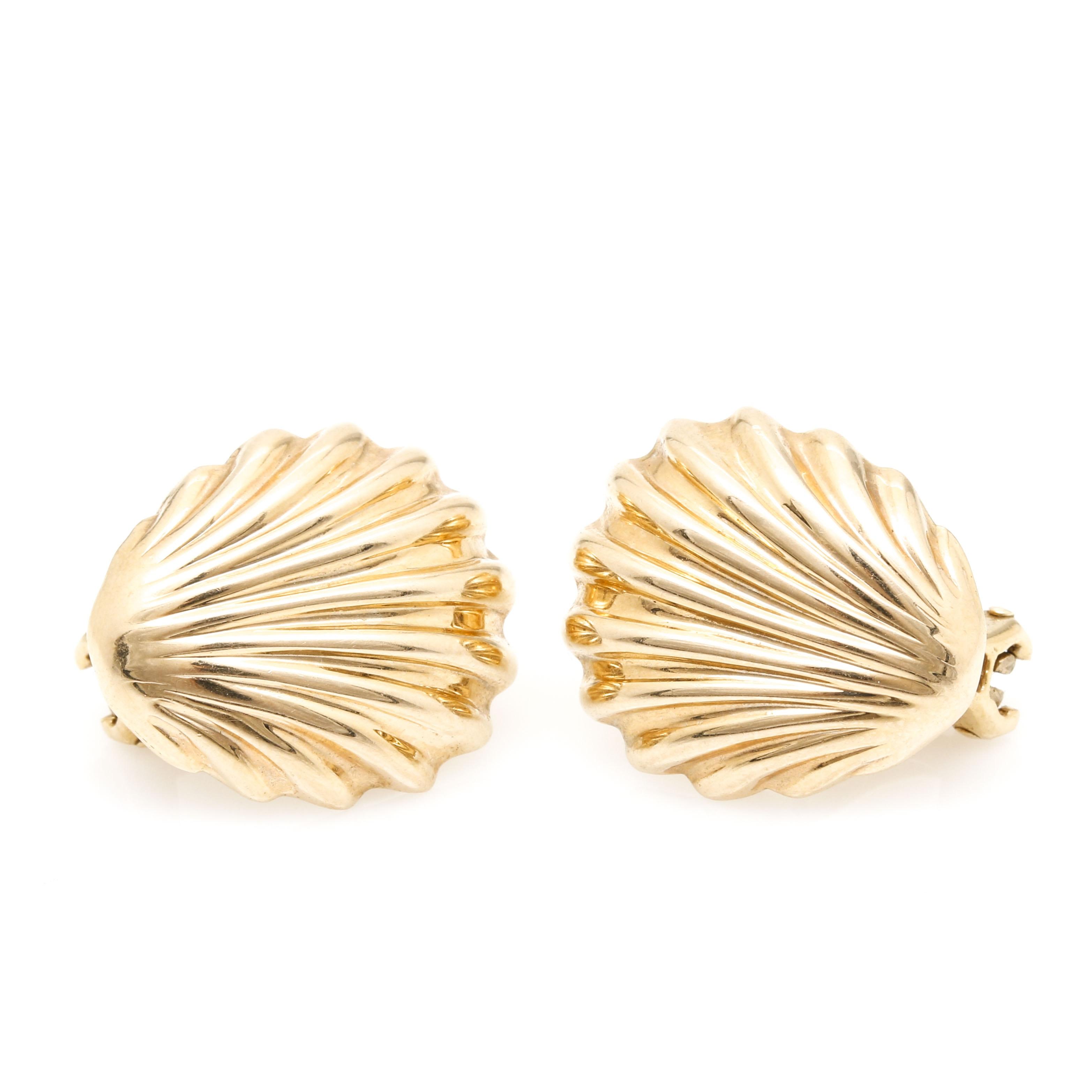 14K Yellow Gold Shell Earrings