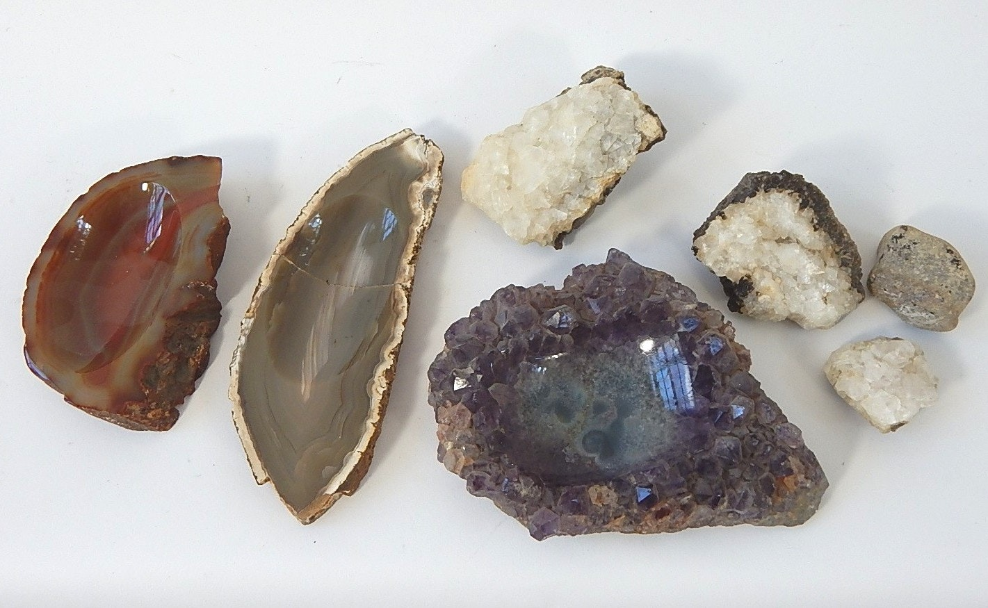 Petrified Wood and Mineral Specimens