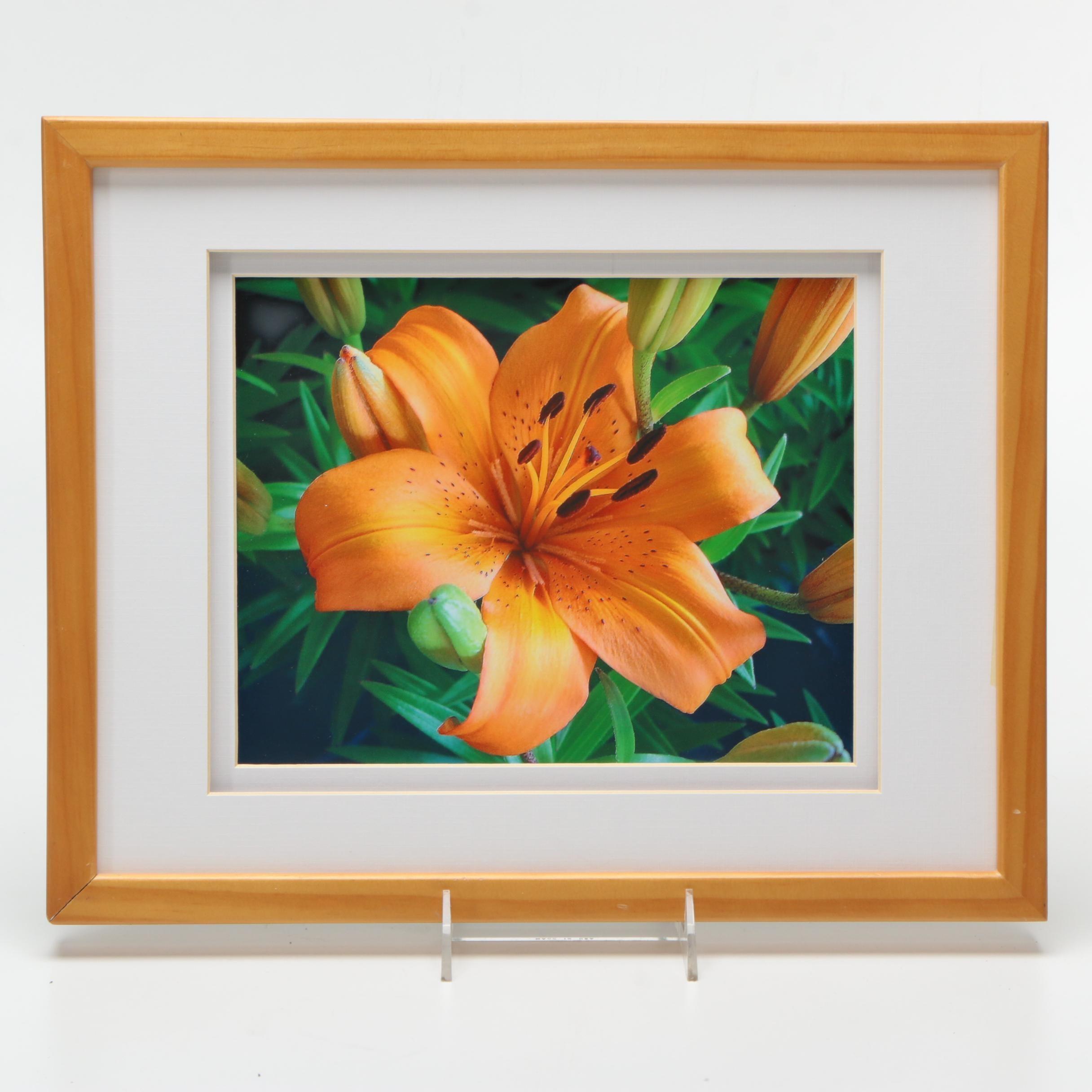 C. Jerry Abraham Giclee Print on Paper of a Lily