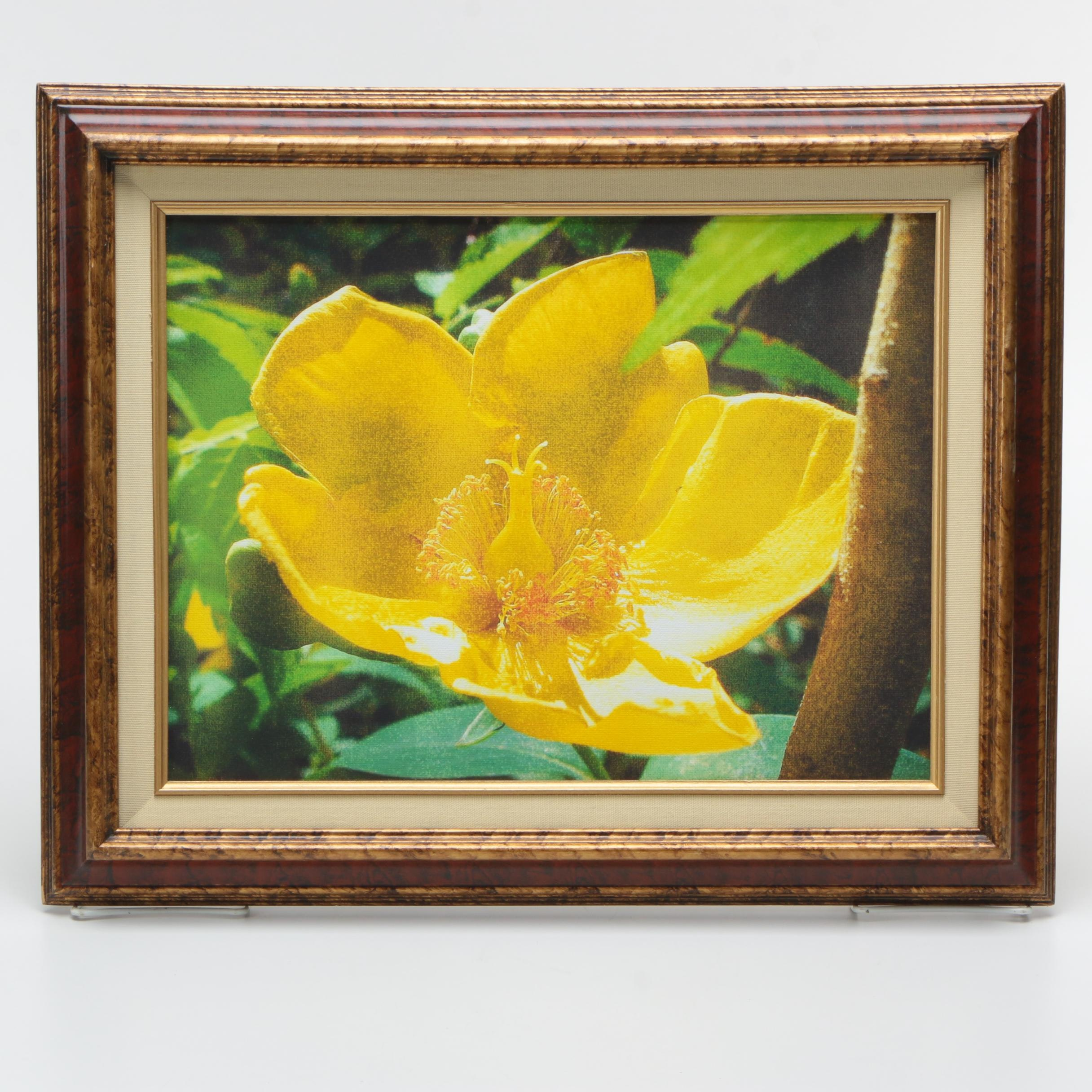 Giclee Print on Canvas of a Flower